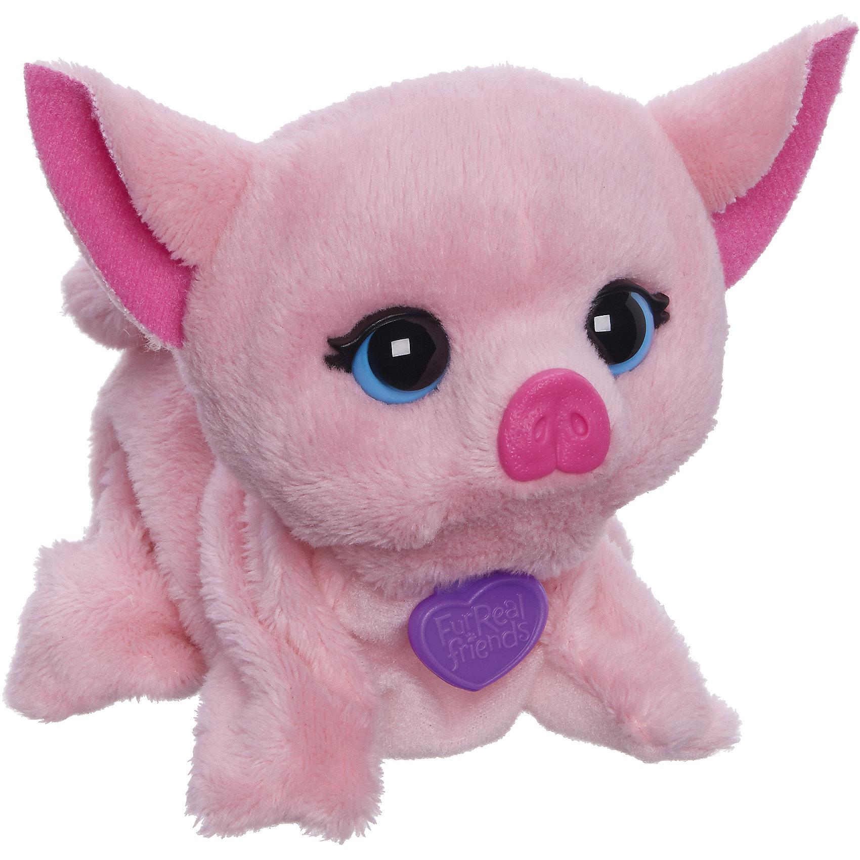 Поющие зверята, FurReal Friends, Hasbro, В2769/B0698Очаровательный плюшевый поросенок с большими выразительными глазами обязательно понравится ребенку! Шерстка розового хрюшки - мягкая и приятная на ощупь. Милый зверек может поворачивать голову, издавать звуки, а также петь веселую песенку. Если познакомить двух зверьков (поставить рядом) они споют песенку вместе. Игрушка выполнена из высококачественных экологичных материалов абсолютно безопасных для детей. <br><br>Дополнительная информация:<br><br>- Материал: плюш, текстиль, пластик.<br>- Размер:<br>- Размер упаковки: 11х 10 х 13 см.<br>- Звуковые эффекты: поет, издает звуки. <br>- Поворачивает голову.<br>- Элемент питания: 2 батарейки, LR44/A76 1.5V (в комплекте).<br><br>Игрушку Поющие зверята, FurReal Friends, Hasbro (Хасбро), можно купить в нашем магазине.<br><br>Ширина мм: 104<br>Глубина мм: 125<br>Высота мм: 113<br>Вес г: 171<br>Возраст от месяцев: 48<br>Возраст до месяцев: 120<br>Пол: Женский<br>Возраст: Детский<br>SKU: 4563917
