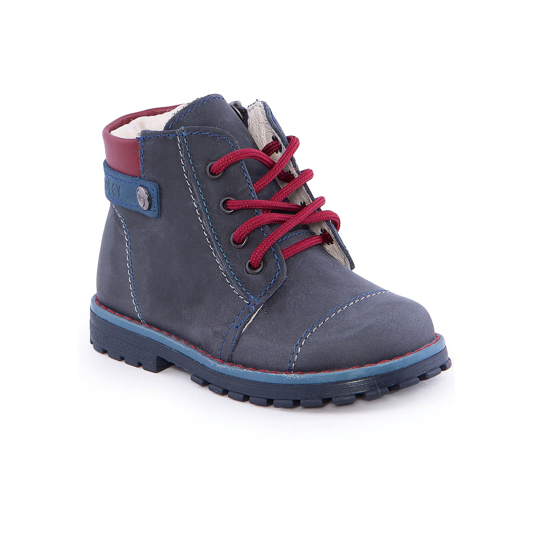Ботинки для мальчика КотофейБотинки для мальчика от известного российского бренда Котофей <br><br>Удобные ботинки изготовлены из натуральной кожи, выполнены в универсальном синем цвете. <br>Верх сделан из материала, обеспечивающего ногам комфорт. Толстая рифленая подошва позволяет избегать скольжения практически на любой поверхности.<br><br>Особенности модели:<br><br>- цвет: синий;<br>- устойчивая подошва;<br>- декорированы красными элементами;<br>- застежка: молния, шнуровка;<br>- вид крепления обуви: клеевой;<br>- анатомическая стелька;<br>- качественные материалы;<br>- защита пальцев и пятки;<br>- модный дизайн.<br><br>Дополнительная информация:<br><br>Температурный режим: от 0° до +15°С.<br><br>Состав: <br><br>верх - натуральная кожа;<br>подкладка - натуральная кожа;<br>подошва - ТЭП.<br><br>Ботинки для мальчика Котофей можно купить в нашем магазине.<br><br>Ширина мм: 262<br>Глубина мм: 176<br>Высота мм: 97<br>Вес г: 427<br>Цвет: синий<br>Возраст от месяцев: 18<br>Возраст до месяцев: 21<br>Пол: Мужской<br>Возраст: Детский<br>Размер: 23,24,25,26<br>SKU: 4565631