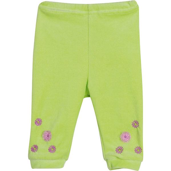 Брюки для девочки  для девочки БимошаПолзунки и штанишки<br>Брюки для девочки  для девочки от марки Бимоша.<br>Однотонные брюки без боковых швов для девочки выполнены из качественного материала (велюр). Модель дополнена  вышивкой,аппликацией. <br>Состав:<br>велюр 80% хлопок, 20% ПЭ.<br><br>Ширина мм: 157<br>Глубина мм: 13<br>Высота мм: 119<br>Вес г: 200<br>Цвет: зеленый<br>Возраст от месяцев: 3<br>Возраст до месяцев: 6<br>Пол: Женский<br>Возраст: Детский<br>Размер: 68,74,62,80,86<br>SKU: 4579521