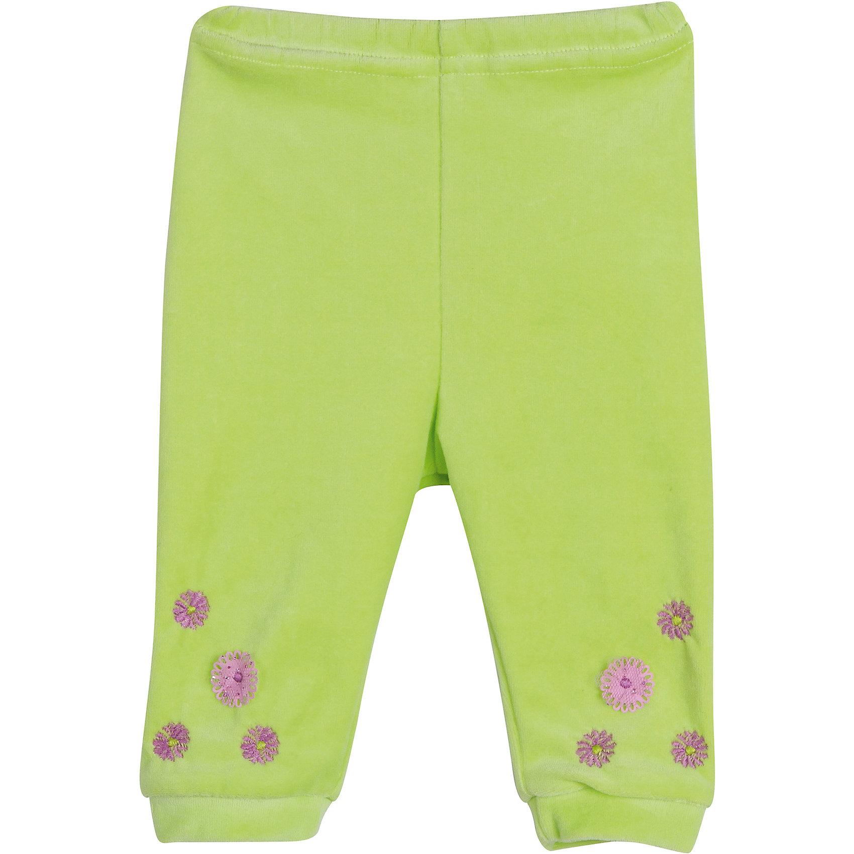 Брюки для девочки  для девочки БимошаПолзунки и штанишки<br>Брюки для девочки  для девочки от марки Бимоша.<br>Однотонные брюки без боковых швов для девочки выполнены из качественного материала (велюр). Модель дополнена  вышивкой,аппликацией. <br>Состав:<br>велюр 80% хлопок, 20% ПЭ.<br><br>Ширина мм: 157<br>Глубина мм: 13<br>Высота мм: 119<br>Вес г: 200<br>Цвет: зеленый<br>Возраст от месяцев: 3<br>Возраст до месяцев: 6<br>Пол: Женский<br>Возраст: Детский<br>Размер: 68,74,86,80,62<br>SKU: 4579521