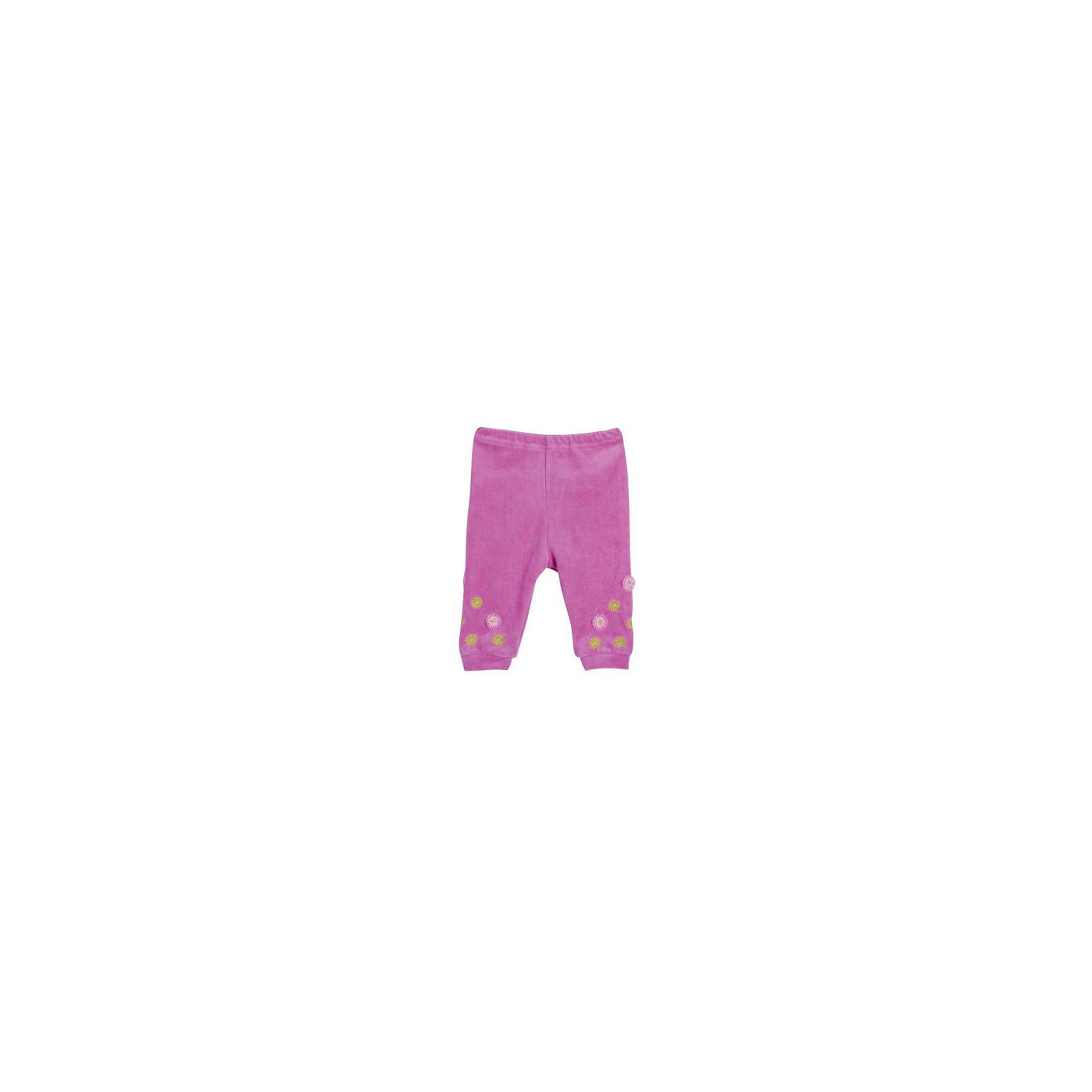 Брюки для девочки  для девочки БимошаБрюки для девочки  для девочки от марки Бимоша.<br>Однотонные брюки без боковых швов для девочки выполнены из качественного материала (велюр). Модель дополнена  вышивкой,аппликацией. <br>Состав:<br>велюр 80% хлопок, 20% ПЭ.<br><br>Ширина мм: 157<br>Глубина мм: 13<br>Высота мм: 119<br>Вес г: 200<br>Цвет: розовый<br>Возраст от месяцев: 6<br>Возраст до месяцев: 9<br>Пол: Женский<br>Возраст: Детский<br>Размер: 86,74,80,68,62<br>SKU: 4579527