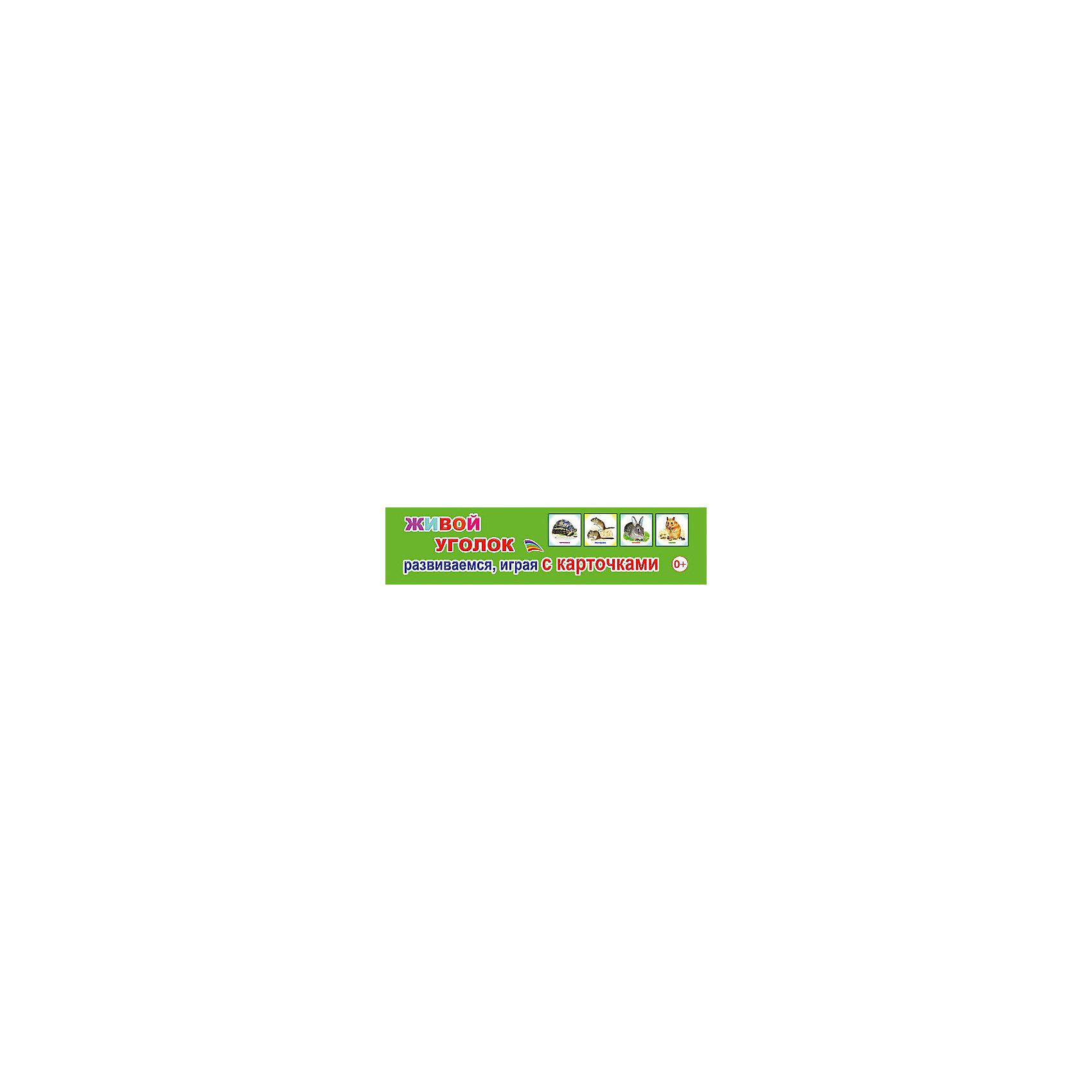 - Развивающие карточки Живой уголок ирина каюкова живой уголок
