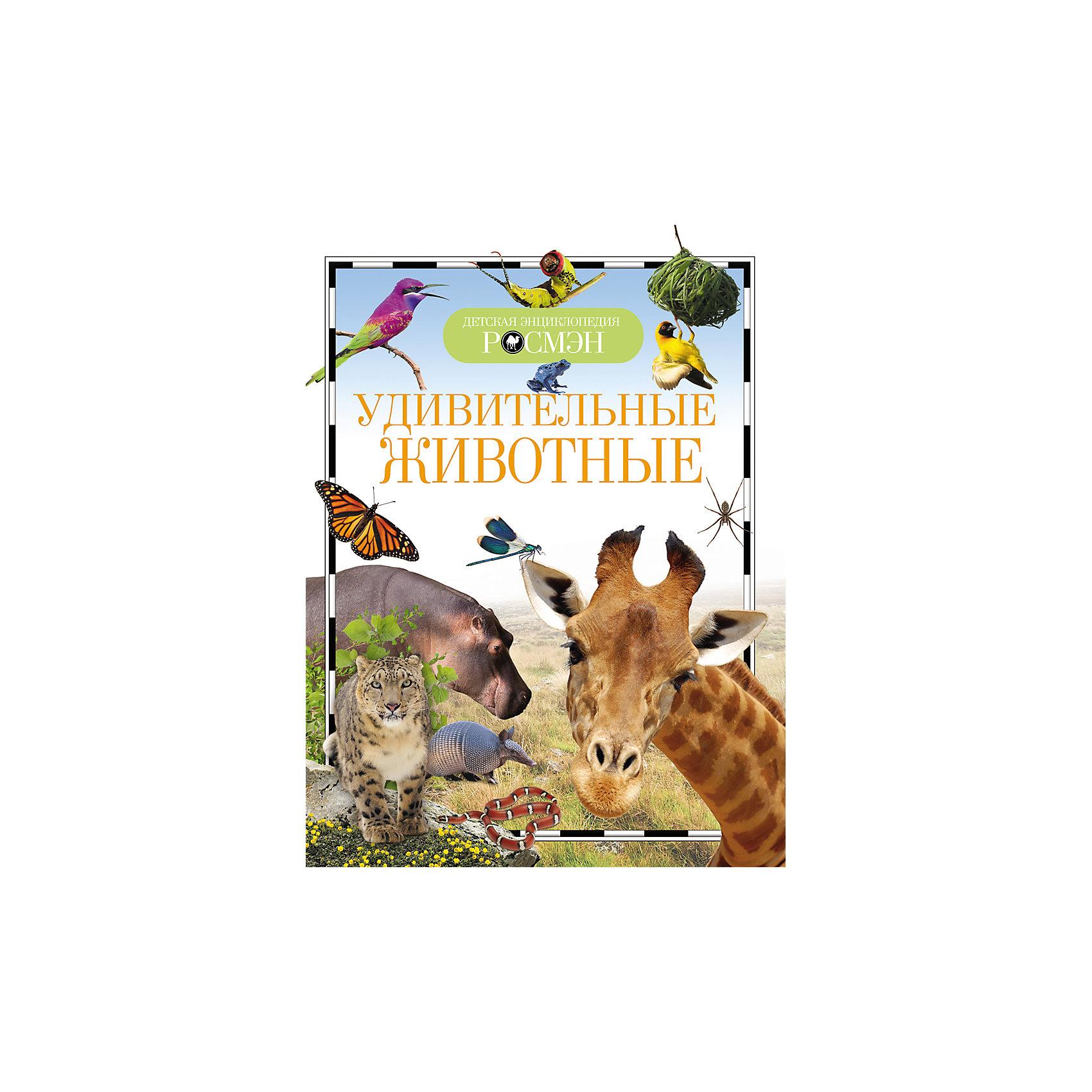 Удивительные животныеЭнциклопедии о животных<br>Удивительные животные - эта красочная книга серии «Детская энциклопедия» содержит много полезных сведений и интересных фактов.<br>Книга рассказывает о самых разных видах животных, обитающих на Земле. Юные читатели узнают любопытные факты из жизни млекопитающих, птиц, насекомых, рептилий, амфибий, морских обитателей планеты, изложенные увлекательным языком. Крошечные и огромные, хищные и травоядные, опасные и безобидные, дикие и домашние - животные такие разные, но именно поэтому они и интересны нам.<br><br>Дополнительная информация:<br><br>- Автор: Травина И.<br>- Издательство: Росмэн<br>- Тип обложки: твердая глянцевая<br>- Иллюстрации: цветные<br>- Количество страниц: 96<br>- Размер: 222 х 165 x 8 мм.<br>- Вес: 230 гр.<br><br>Книгу Удивительные животные можно купить в нашем интернет-магазине.<br><br>Ширина мм: 222<br>Глубина мм: 165<br>Высота мм: 8<br>Вес г: 230<br>Возраст от месяцев: 84<br>Возраст до месяцев: 108<br>Пол: Унисекс<br>Возраст: Детский<br>SKU: 4602297