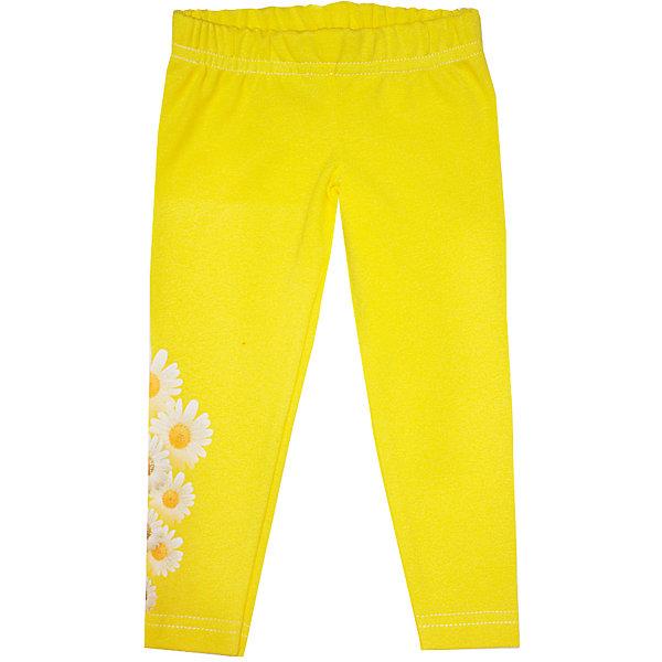 Леггинсы  для девочки KotMarKotПолзунки и штанишки<br>Леггинсы для девочки от российской марки KotMarKot.<br>Состав: 100% хлопок (интерлок-пенье)<br><br>Ширина мм: 123<br>Глубина мм: 10<br>Высота мм: 149<br>Вес г: 209<br>Цвет: желтый<br>Возраст от месяцев: 3<br>Возраст до месяцев: 6<br>Пол: Женский<br>Возраст: Детский<br>Размер: 68,74,80,92,98,86<br>SKU: 4624006