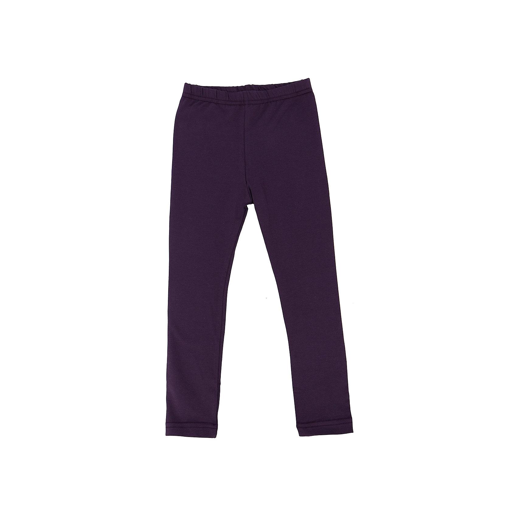 Леггинсы для девочки АпрельЛеггинсы от торговой марки Апрель выполнены из высококачественного материала, имеют фиолетовую расцветку. Модель облегающего фигуру кроя. Эластичный пояс для более комфортной посадки. Отличный вариант на каждый день.<br><br>Дополнительная информация: <br><br>- цвет: фиолетовый<br>- состав: хлопок 95%,лайкра 5%<br>- параметры брючин: ширина брючин - низ: 13 см; высота посадки: 13.5 см; длина по внутреннему шву: 28.5 см<br>- фактура материала: трикотажный<br>- тип посадки: средняя посадка<br>- тип карманов: без карманов<br>- по назначению: повседневный стиль<br>- сезон: круглогодичный<br>- пол: девочки<br>- фирма-производитель: Апрель<br>- страна производитель: Россия<br>- комплектация: леггинсы<br><br>Леггинсы для девочки торговой марки Апрель можно купить в нашем интернет-магазине.<br><br>Ширина мм: 123<br>Глубина мм: 10<br>Высота мм: 149<br>Вес г: 209<br>Цвет: разноцветный<br>Возраст от месяцев: 24<br>Возраст до месяцев: 36<br>Пол: Женский<br>Возраст: Детский<br>Размер: 98,110,116,128,92,122,104<br>SKU: 4630776