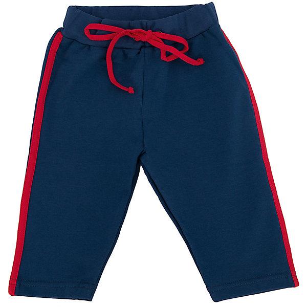 Брюки для мальчика АпрельБрюки<br>Стильные брюки из мягкого хлопка. Приятные на ощупь, не сковывают движения, обеспечивая комфорт. Изделие на эластичном поясе, для лучшей фиксации на талии вставлен шнурок, украшено лампасами. Благодаря универсальному крою и расцветке бриджи являются неотъемлемым предметом детского гардероба! Состав: 95% хлопок, 5% лайкра<br><br>Ширина мм: 215<br>Глубина мм: 88<br>Высота мм: 191<br>Вес г: 336<br>Цвет: синий<br>Возраст от месяцев: 6<br>Возраст до месяцев: 9<br>Пол: Мужской<br>Возраст: Детский<br>Размер: 74,80<br>SKU: 4630875