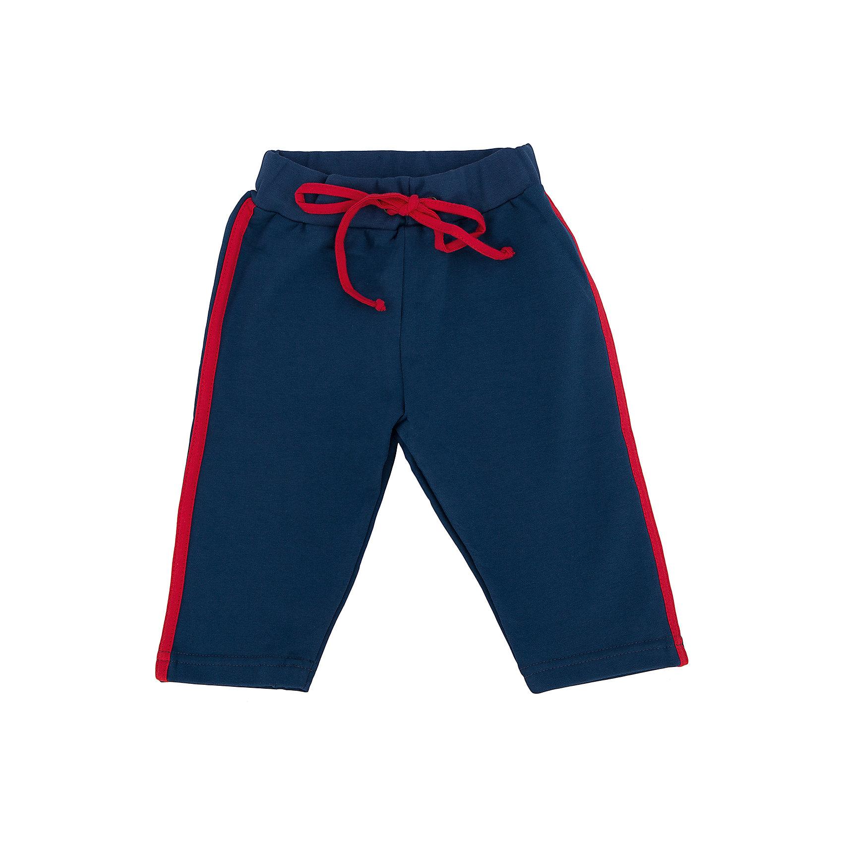 Брюки для мальчика АпрельСтильные брюки из мягкого хлопка. Приятные на ощупь, не сковывают движения, обеспечивая комфорт. Изделие на эластичном поясе, для лучшей фиксации на талии вставлен шнурок, украшено лампасами. Благодаря универсальному крою и расцветке бриджи являются неотъемлемым предметом детского гардероба! Состав: 95% хлопок, 5% лайкра<br><br>Ширина мм: 215<br>Глубина мм: 88<br>Высота мм: 191<br>Вес г: 336<br>Цвет: синий<br>Возраст от месяцев: 6<br>Возраст до месяцев: 9<br>Пол: Мужской<br>Возраст: Детский<br>Размер: 74,80<br>SKU: 4630875