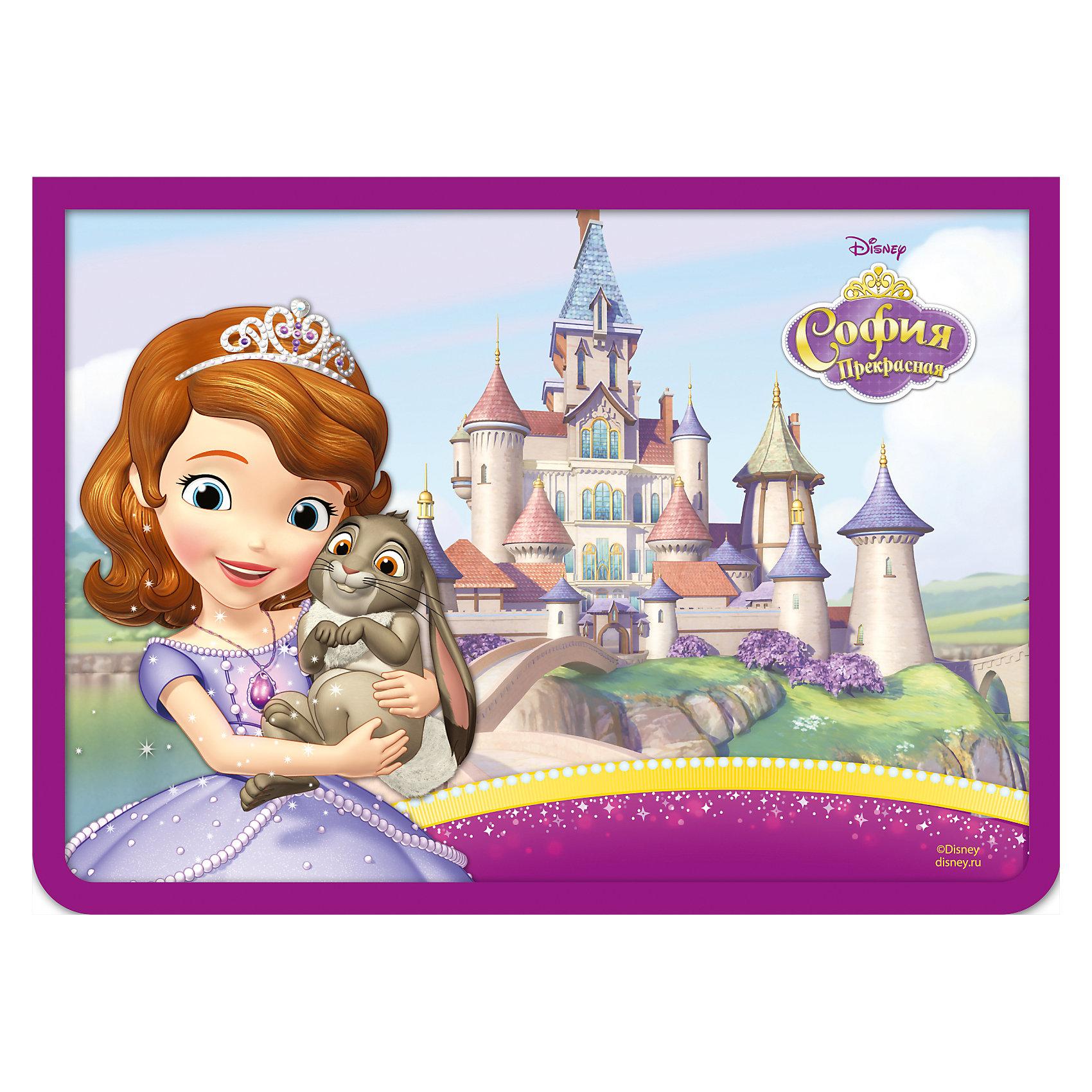 Папка для тетрадей на молнии София А4Яркая и стильная папка для тетрадей Disney «София» формата А4 – это модный и привлекательный аксессуар для вашей малышки. Она надежно защищает от деформации тетради, документы и прочие бумаги, поэтому с ней можно забыть о таких проблемах, как погнутые уголки и края. Благодаря ей, все необходимые бумаги и тетради будут аккуратно собраны в одном месте, что сократит время их поиска. Одна стенка аксессуара прозрачна, что позволяет, видя содержимое в ней, быстрее находить нужный предмет. Папка закрывается на молнию, поэтому вы можете быть уверены, что положенные в нее бумаги оттуда не выпадут. Аксессуар изготовлен из ламинированного картона, декорированного ярким принтом, ПВХ и полиэстера. Размер: 33,6х24,3х1,5 см.<br><br>Ширина мм: 337<br>Глубина мм: 240<br>Высота мм: 16<br>Вес г: 108<br>Возраст от месяцев: 84<br>Возраст до месяцев: 144<br>Пол: Унисекс<br>Возраст: Детский<br>SKU: 4637441