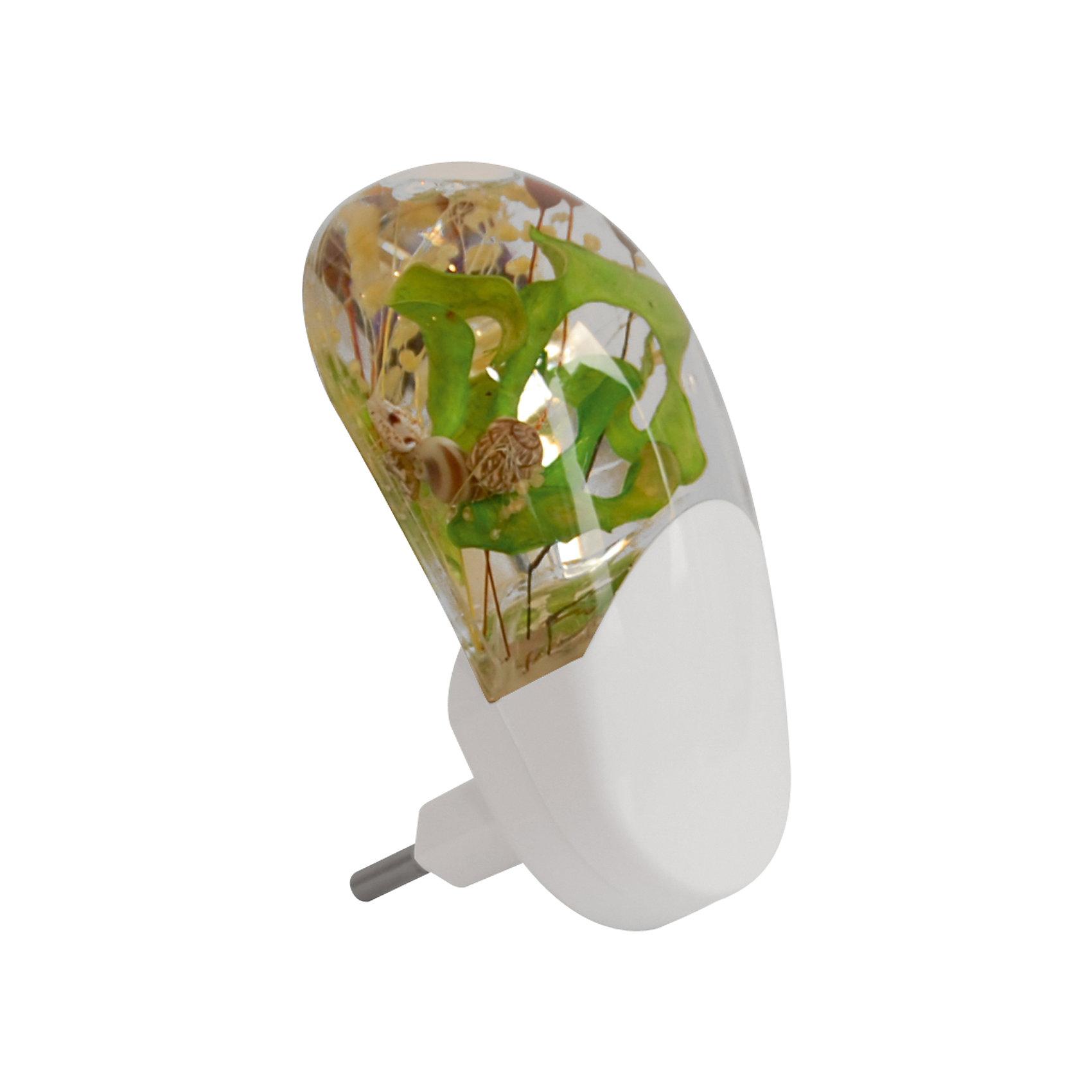 Ночник Весна LED Фотоэлемент 0.2Вт, Ultra Light, зелёныйЗеленый ночник с фотоэлементом, 40 Вт – этот светильник-ночник дополнит интерьер и создает атмосферу уюта и покоя.<br>Светильник-ночник станет световым ориентиром и успокаивающим фактором для детей и взрослых в темное время суток. Он декорирован нежным букетом сухоцветов и миниатюрными ракушками, и ассоциируется с весной. Работает на базе трех светодиодов. Светильник включается в розетку и не нуждается в отключении, так как оснащен датчиком освещенности. Датчик распознает уровень яркости в помещении и производит автоматическое отключение и включение питания. Прозрачные элементы светильника подсвечиваются плавным переливанием цветов: красный, зелёный, синий. Светильник-ночник не нагревается во время работы, светодиоды имеют долгий срок службы. Предусмотрено прямое подключение к различным типам розеток.<br><br>Дополнительная информация:<br><br>- Материал: пластик<br>- Источник света: LED 0,5Вт<br>- Срок службы светодиодов 80000 часов.<br>- Напряжение: 220В<br>- Низкое потребление электроэнергии (0,2 Вт)<br>- Размер светильника: 6 х 7,5 х 11 см.<br>- Размер упаковки: 11,5 х 8 х 17,5 см.<br>- Вес: 150 гр.<br><br>Зеленый ночник с фотоэлементом, 40 Вт можно купить в нашем интернет-магазине.<br><br>Ширина мм: 115<br>Глубина мм: 80<br>Высота мм: 175<br>Вес г: 150<br>Возраст от месяцев: 36<br>Возраст до месяцев: 192<br>Пол: Унисекс<br>Возраст: Детский<br>SKU: 4641445