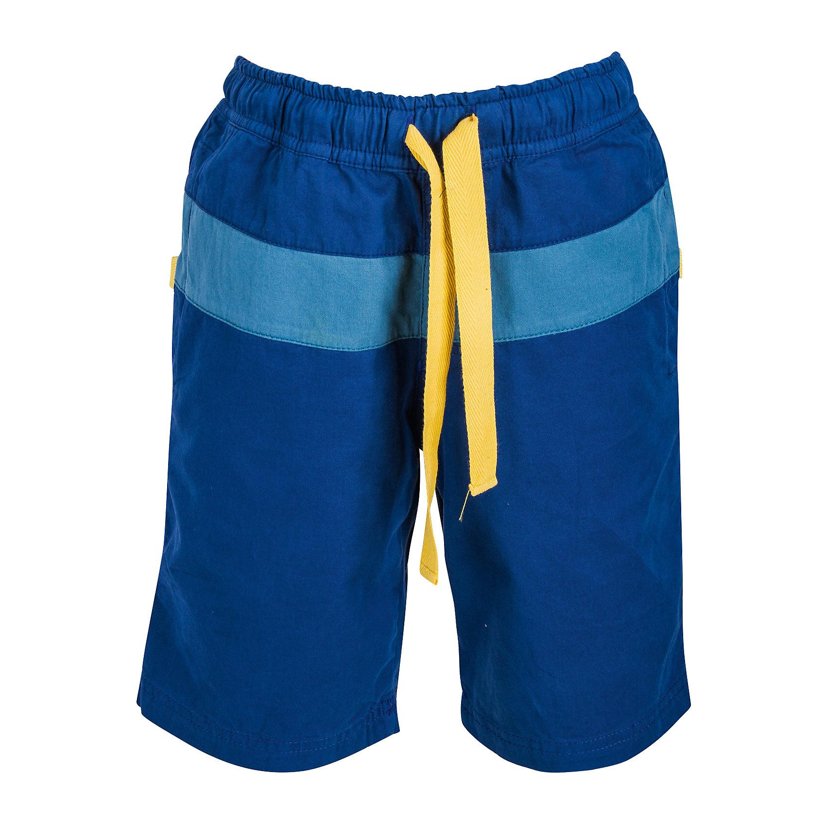 Шорты для мальчика Bell BimboШорты, бриджи, капри<br>Однотонные шорты с контрастной вставкой с двух сторон, один боковой карман, один накладной карман на липучке сзади, пояс на резинке + регулятор-шнурок. Состав: Твил 100% хлопок<br><br>Ширина мм: 191<br>Глубина мм: 10<br>Высота мм: 175<br>Вес г: 273<br>Цвет: синий<br>Возраст от месяцев: 24<br>Возраст до месяцев: 36<br>Пол: Мужской<br>Возраст: Детский<br>Размер: 98,110,104,122,116<br>SKU: 4645462