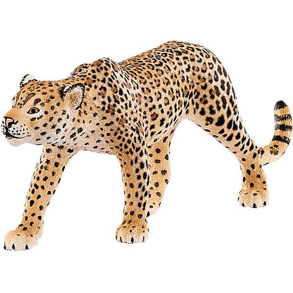 Леопард, SchleichМир животных<br>Леопард, Schleich – для всех любителей реалистичных фигурок.<br>Отличное дополнение в коллекцию. Красивые качественные фигурки в точности повторяют настоящих животных. Сделаны они из безопасного и не токсичного материала, который не вызывает аллергию. Краски не тускнеют и не стираются от длительной и активной игры. Грозный хищник леопард однозначно порадует вашего ребенка.<br><br>Дополнительная информация:<br><br>- возраст: от 3 лет<br>- материал: каучук, пластик<br>- размер: 12 х 2.5 х 5 см<br>- страна: Германия<br><br>Леопард, Schleich можно купить в нашем интернет магазине.<br><br>Ширина мм: 144<br>Глубина мм: 86<br>Высота мм: 43<br>Вес г: 45<br>Возраст от месяцев: 36<br>Возраст до месяцев: 96<br>Пол: Унисекс<br>Возраст: Детский<br>SKU: 4662505