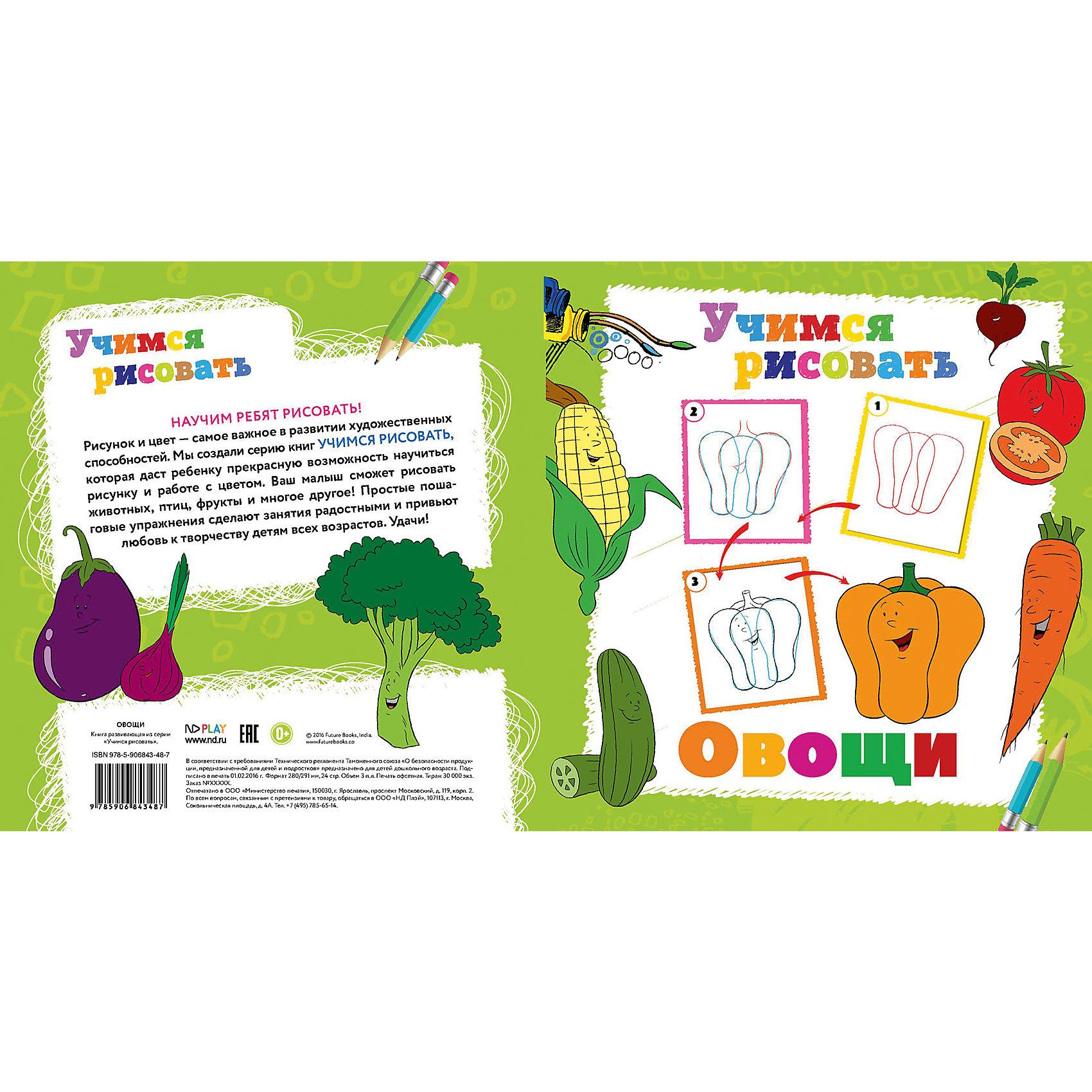 Книга Овощи Учимся рисоватьРисование<br>Книга Овощи Учимся рисовать – это уроки поэтапного рисования для детей.<br>Многие малыши обожают рисовать! Рисование и раскрашивание - это не только интересное, но и очень полезное занятие. С книгой-раскраской «Овощи» серии «Учимся рисовать» заниматься рисованием очень весело. Ваш ребенок сможет научиться рисовать овощи, воспользовавшись пошаговыми советами художника. Книга поможет развить внимательность, мелкую моторику, творческие способности.<br><br>Дополнительная информация:<br><br>- Издательство: Новый диск, 2016 г.<br>- Серия: Учимся рисовать<br>- Тип обложки: мягкий переплет (крепление скрепкой или клеем)<br>- Иллюстрации: цветные, черно-белые<br>- Количество страниц: 24 (офсет)<br>- Размер: 290x280x2 мм.<br>- Вес: 114 гр.<br><br>Книгу Овощи Учимся рисовать можно купить в нашем интернет-магазине.<br><br>Ширина мм: 280<br>Глубина мм: 3<br>Высота мм: 290<br>Вес г: 112<br>Возраст от месяцев: 36<br>Возраст до месяцев: 84<br>Пол: Унисекс<br>Возраст: Детский<br>SKU: 4664438