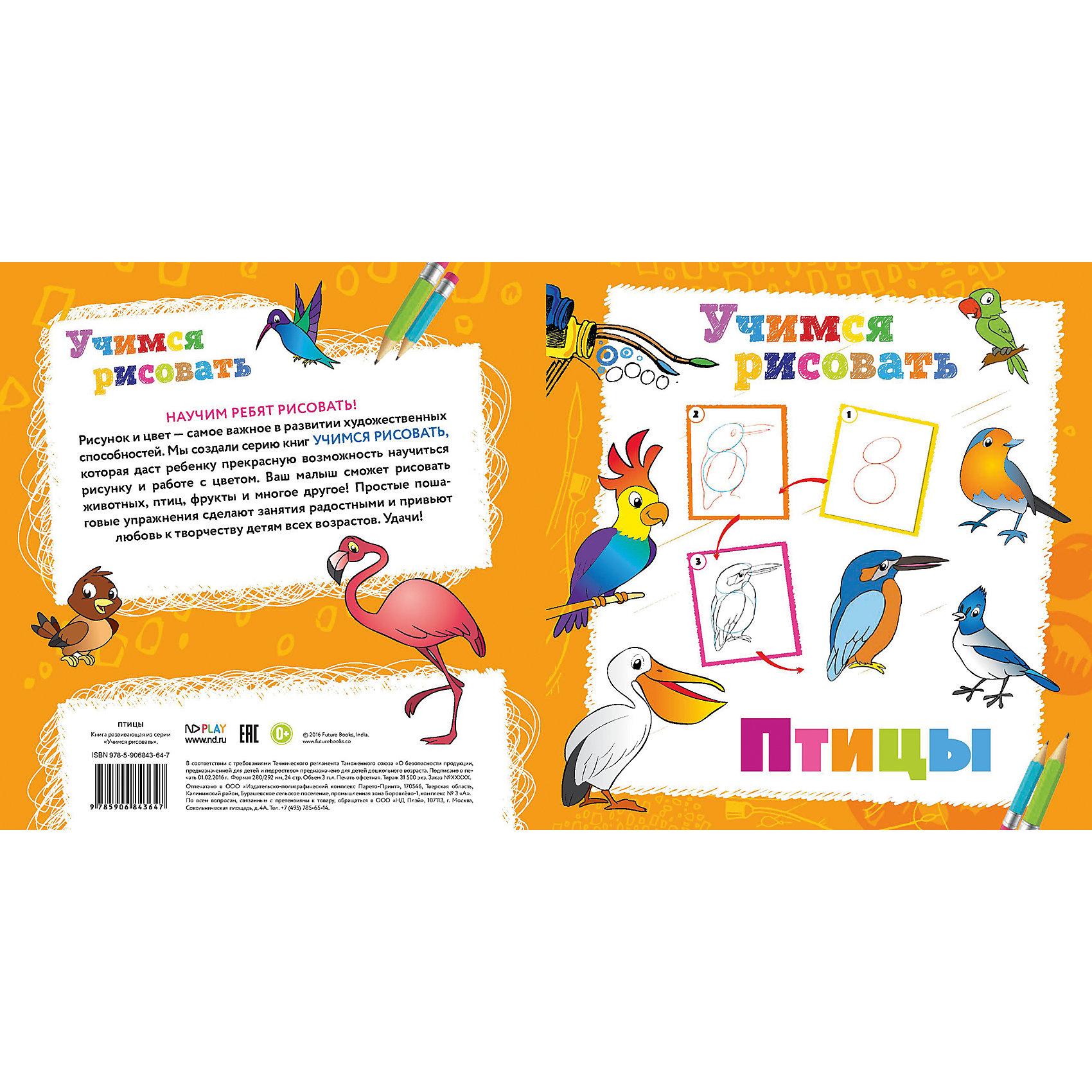 Новый Диск Книга Птицы Учимся рисовать nd play книга учимся рисовать транспорт