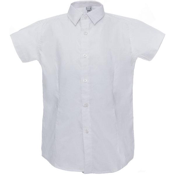 Рубашка для мальчика ScoolБлузки и рубашки<br>Рубашка для мальчика от известного бренда Scool<br>Состав:<br>60% хлопок, 37% полиэстер, 3% эластан<br>Стильная белая сорочка. Короткие рукава, удобно застегивается на пуговицы. Модный зауженный силуэт благодаря вытачкам спереди и сзади.<br>Ширина мм: 174; Глубина мм: 10; Высота мм: 169; Вес г: 157; Цвет: белый; Возраст от месяцев: 120; Возраст до месяцев: 132; Пол: Мужской; Возраст: Детский; Размер: 146,134,128,158,164,140,122,152; SKU: 4686751;