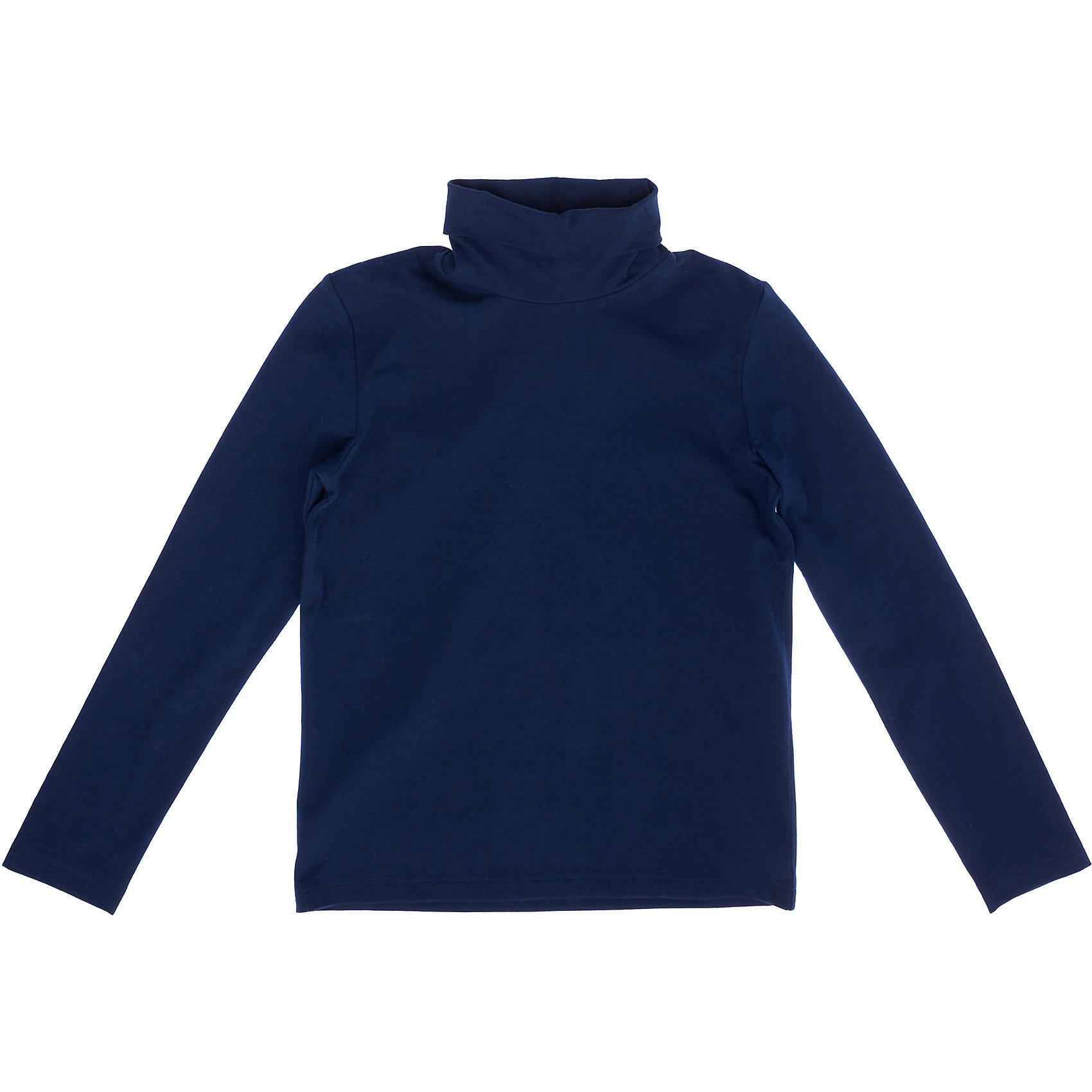 Водолазка для мальчика ScoolВодолазка для мальчика от известного бренда Scool<br>Состав:<br>92% хлопок, 8% эластан<br>Уютная темно-синяя водолазка с высоким воротником. Хорошо смотрится с любыми брюками и джинсами.<br><br>Ширина мм: 230<br>Глубина мм: 40<br>Высота мм: 220<br>Вес г: 250<br>Цвет: полуночно-синий<br>Возраст от месяцев: 84<br>Возраст до месяцев: 96<br>Пол: Мужской<br>Возраст: Детский<br>Размер: 128,122,146,164,158,152,140,134<br>SKU: 4686775