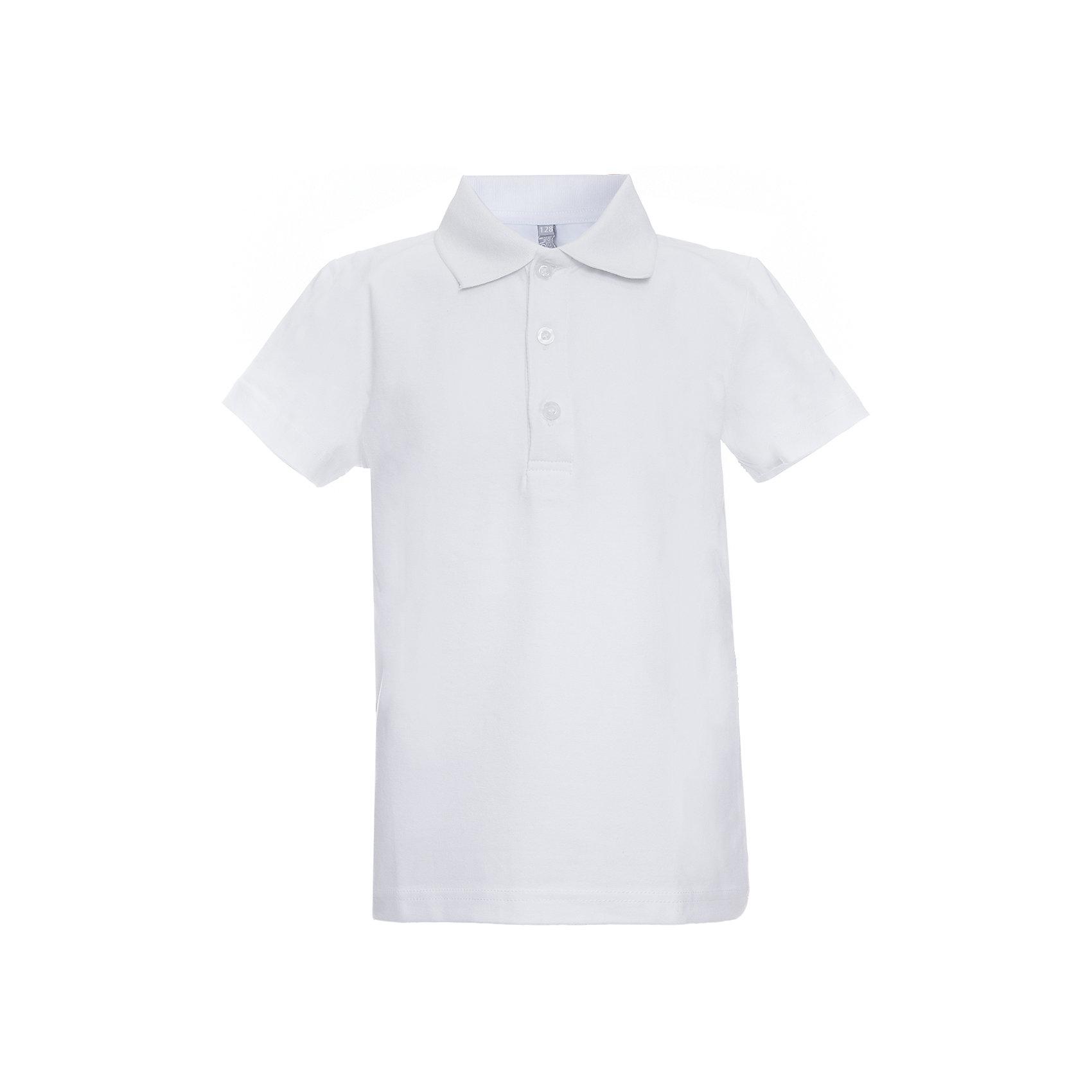 Футболка-поло для мальчика ScoolФутболка-поло для мальчика от известного бренда Scool.<br>Стильная хлопковая футболка-поло белого цвета. Воротник застегивается на 3 пуговицы.<br>Состав:<br>92% хлопок, 8% эластан<br><br>Ширина мм: 230<br>Глубина мм: 40<br>Высота мм: 220<br>Вес г: 250<br>Цвет: белый<br>Возраст от месяцев: 72<br>Возраст до месяцев: 84<br>Пол: Мужской<br>Возраст: Детский<br>Размер: 122,146,164,158,152,140,134,128<br>SKU: 4686802