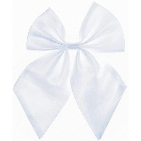 Галстук для девочки ScoolАксессуары<br>Галстук для девочки от известного бренда Scool<br>Состав:<br>100% полиэстер<br>Стильный галстук-бантик. Сделает нарядной любую рубашку.<br><br>Ширина мм: 170<br>Глубина мм: 157<br>Высота мм: 67<br>Вес г: 117<br>Цвет: белый<br>Возраст от месяцев: 84<br>Возраст до месяцев: 144<br>Пол: Женский<br>Возраст: Детский<br>Размер: one size<br>SKU: 4687171