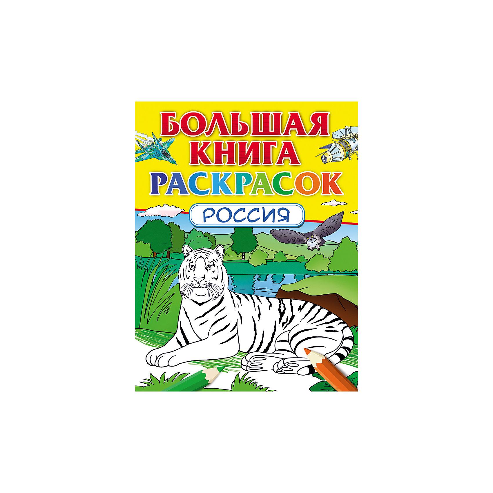 Большая книга раскрасок РоссияРаскраски по номерам<br>Сборник красочных, интересных и в то же время удивительно познавательных раскрасок о нашей Родине. Раскрашивая, ребенок познакомится с основными темами, посвященными России и русской истории.<br><br>Ширина мм: 274<br>Глубина мм: 210<br>Высота мм: 8<br>Вес г: 249<br>Возраст от месяцев: 60<br>Возраст до месяцев: 120<br>Пол: Унисекс<br>Возраст: Детский<br>SKU: 4712338