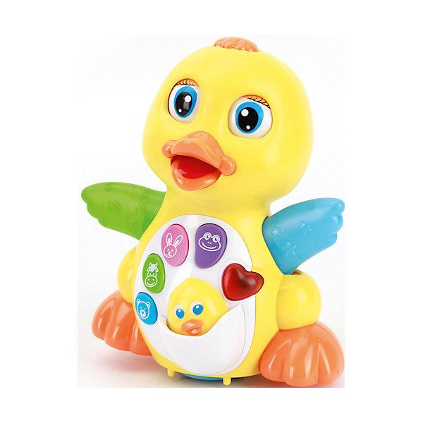 Интерактивная игрушка Уточка: стихи и песни А.Барто, со светом и звуком, УмкаФигурки из мультфильмов<br>Интерактивная игрушка в виде утенка разработана специально для самых маленьких. Она поет детские песни, рассказывает стихи, имеет световые эффекты. С помощью нее ребенок будет активнее изучать окружающий мир и развивать моторику, слуховое восприятие и память.<br>Игрушка произведена из высококачественных материалов, которые безопасны для ребенка. Она очень легко моется и весит меньше килограмма. Работает на батарейках.<br><br>Дополнительная информация:<br><br>цвет: разноцветный;<br>материал: пластик;<br>язык: русский;<br>размер: 20*20*13 см;<br>вес: 0,56 кг.<br><br>Интерактивную игрушку Уточка: стихи и песни А.Барто, со светом и звуком, от марки Умка можно купить в нашем магазине.<br>Ширина мм: 200; Глубина мм: 200; Высота мм: 130; Вес г: 560; Возраст от месяцев: 12; Возраст до месяцев: 36; Пол: Унисекс; Возраст: Детский; SKU: 4720283;
