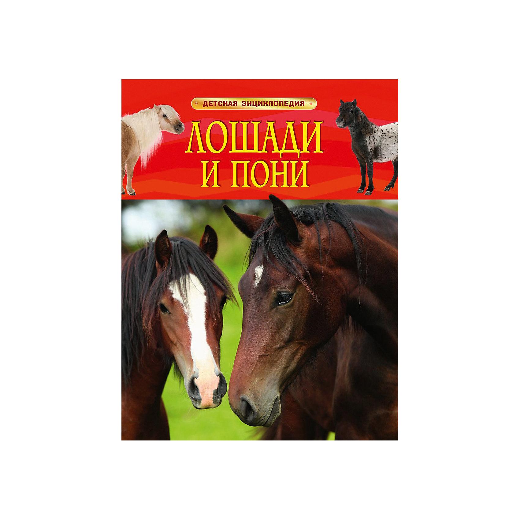 Росмэн Детская энциклопедия Лошади и пони травина и в лошади самая первая энциклопедия