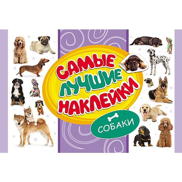 Самые лучшие наклейки, Собаки (336 наклеек)Наклейки и раскраски<br>Альбом Самые лучшие наклейки, Собаки непременно порадует всех любителей этих популярных домашних питомцев. В альбоме содержится большое количество тематических наклеек с красочными изображениями собак разных пород. Они прекрасно подойдут для украшения рисунков, открыток, различных предметов и игрушек.<br><br><br>Дополнительная информация:<br><br>- Серия: Стикерляндия<br>- Обложка: мягкая.<br>- Иллюстрации: цветные.<br>- Объем: 16 стр.<br>- Размер: 30 х 0,2 х 20 см.<br>- Вес: 101 гр.<br><br>Самые лучшие наклейки, Собаки, Росмэн, можно купить в нашем интернет-магазине.<br><br>Ширина мм: 300<br>Глубина мм: 200<br>Высота мм: 2<br>Вес г: 101<br>Возраст от месяцев: 60<br>Возраст до месяцев: 144<br>Пол: Унисекс<br>Возраст: Детский<br>SKU: 4720617