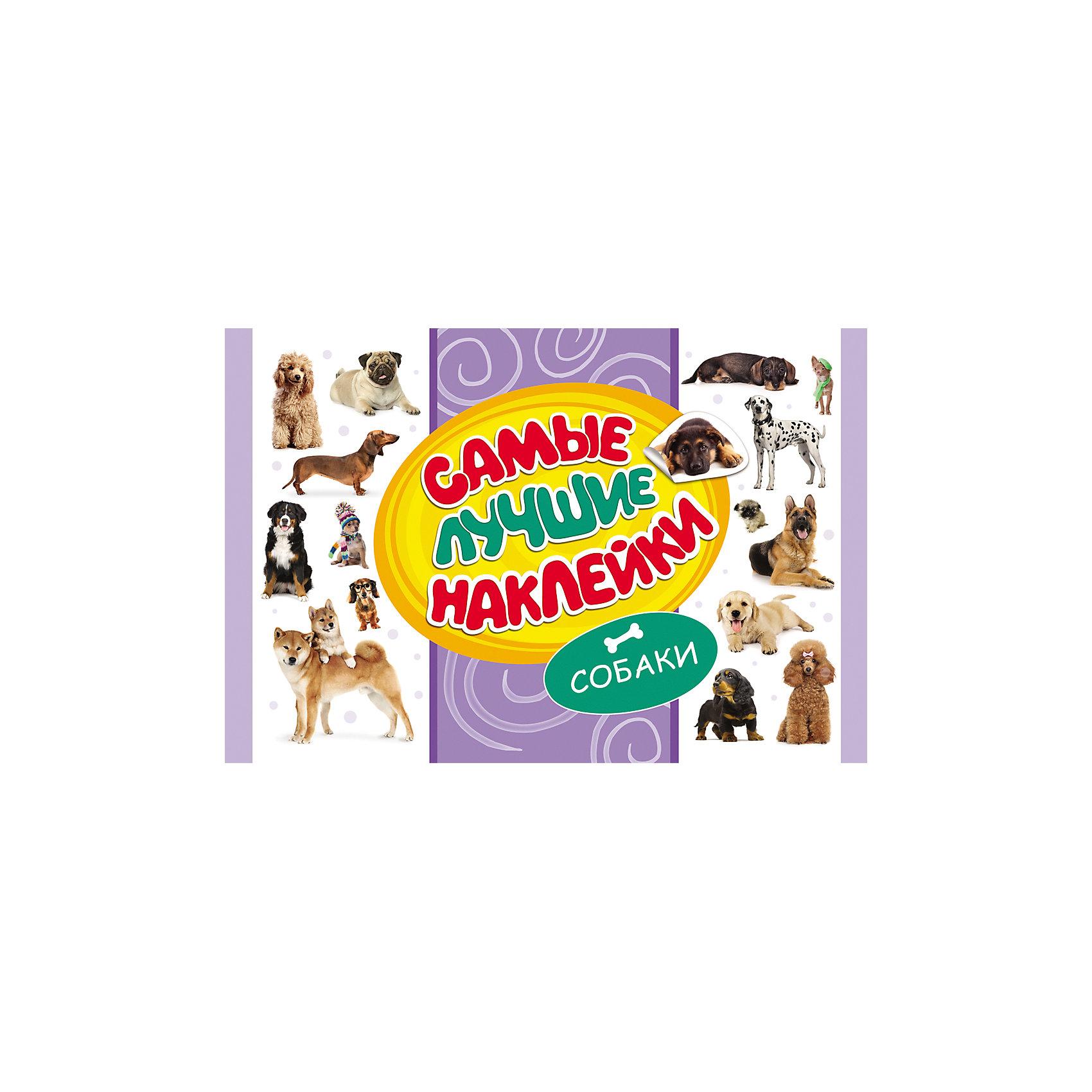 Самые лучшие наклейки, Собаки (336 наклеек)Росмэн<br>Альбом Самые лучшие наклейки, Собаки непременно порадует всех любителей этих популярных домашних питомцев. В альбоме содержится большое количество тематических наклеек с красочными изображениями собак разных пород. Они прекрасно подойдут для украшения рисунков, открыток, различных предметов и игрушек.<br><br><br>Дополнительная информация:<br><br>- Серия: Стикерляндия<br>- Обложка: мягкая.<br>- Иллюстрации: цветные.<br>- Объем: 16 стр.<br>- Размер: 30 х 0,2 х 20 см.<br>- Вес: 101 гр.<br><br>Самые лучшие наклейки, Собаки, Росмэн, можно купить в нашем интернет-магазине.<br><br>Ширина мм: 300<br>Глубина мм: 200<br>Высота мм: 2<br>Вес г: 101<br>Возраст от месяцев: 60<br>Возраст до месяцев: 144<br>Пол: Унисекс<br>Возраст: Детский<br>SKU: 4720617