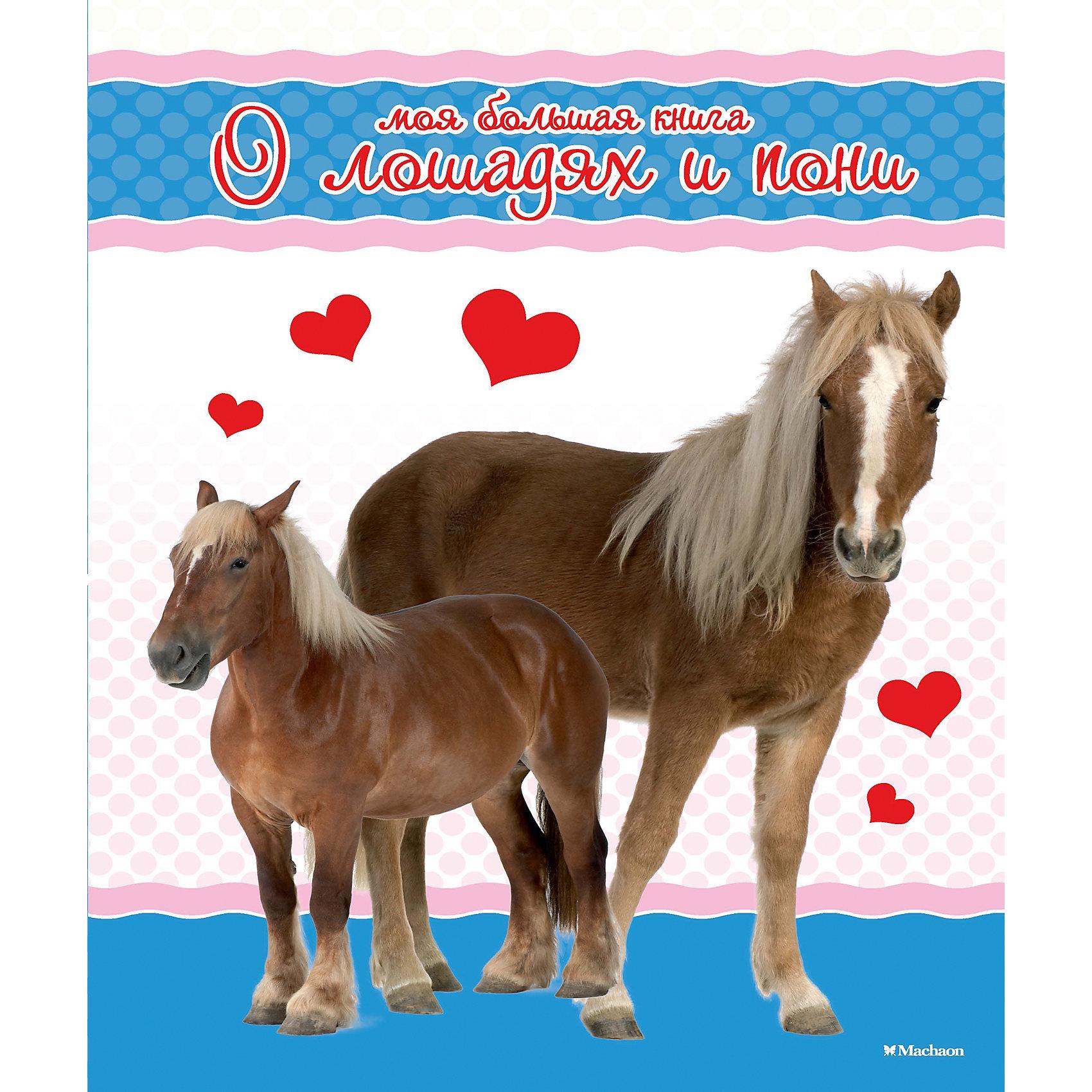 Моя большая книга о лошадях и пониЭнциклопедии о животных<br>Книга Коэ Натали Моя большая книга о лошадях и пони– это красочная книга – альбом посвященная разным породам домашних лошадей и пони. На фотографиях крупным планом представлены быстроногие скакуны, упряжные лошади, трудолюбивые тяжеловозы и симпатичные пони. В этой книге вы познакомитесь со строением и поведением четвероногих помощников человека,  о «профессиях», породах и мастях этих благородных и дружелюбных животных. Не забыты и советы по содержанию, кормлению лошадей и уходу за ними.<br><br>Дополнительная информация:<br><br>Возраст: от 6 лет;<br>Автор: Коэ Натали;<br>Формат: 28,5х21 см.;<br>Переплет: твердый переплет;<br>Иллюстрации: цветные;<br>Страниц: 318;<br>Масса: 1,5 кг.<br><br>Если Ваш ребенок любит или  пока только начинает интересовать лошадьми, то эта книжка точно для вас! <br><br>Книгу Коэ Натали Моя большая книга о лошадях и пони можно купить в нашем магазине.<br><br>Ширина мм: 285<br>Глубина мм: 210<br>Высота мм: 24<br>Вес г: 1510<br>Возраст от месяцев: 132<br>Возраст до месяцев: 168<br>Пол: Унисекс<br>Возраст: Детский<br>SKU: 4725955