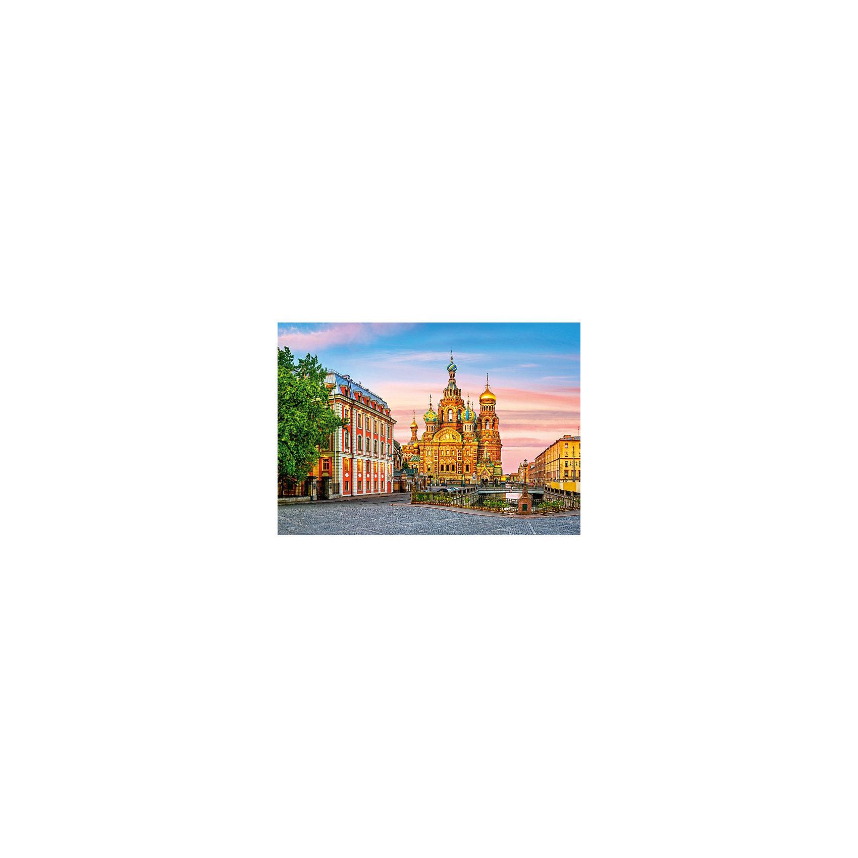 Castorland Пазл Храм в Санкт-Петербурге, 500 деталей, Castorland пазлы castorland пазл храм в санкт петербурге 500 элементов