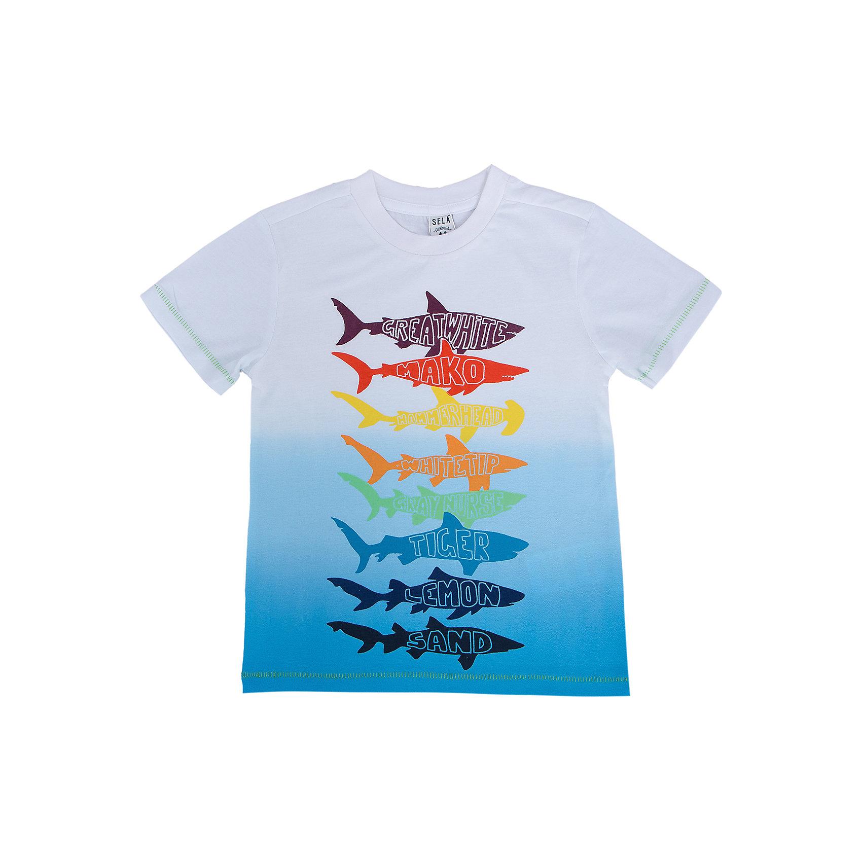 Футболка для мальчика SELAСтильная футболка для мальчика от популярного бренда SELA. Изделие выполнено из натурального гипоаллергенного трикотажа, очень мягкого, дышащего и приятного к телу, и обладает следующими особенностями:<br>- эффектный принт акулы;<br>- эластичная отделка горловины;<br>- комфортный крой;<br>- базовая модель.<br>Великолепный выбор для активного лета!<br><br>Дополнительная информация:<br>- состав: 100% хлопок<br>- цвет: мультиколор<br><br>Футболку для мальчика SELA можно купить в нашем магазине<br><br>Ширина мм: 230<br>Глубина мм: 40<br>Высота мм: 220<br>Вес г: 250<br>Цвет: голубой<br>Возраст от месяцев: 36<br>Возраст до месяцев: 48<br>Пол: Мужской<br>Возраст: Детский<br>Размер: 116,92,98,110,104<br>SKU: 4741171