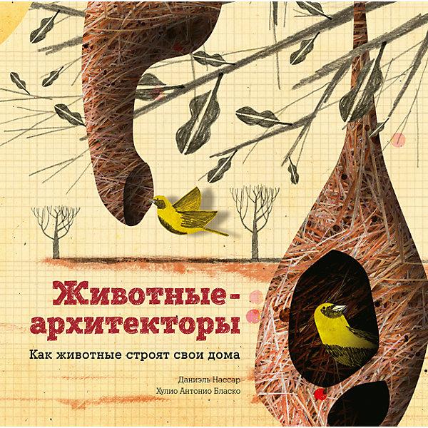 Купить Животные-архитекторы, Манн, Иванов и Фербер, Россия, Унисекс