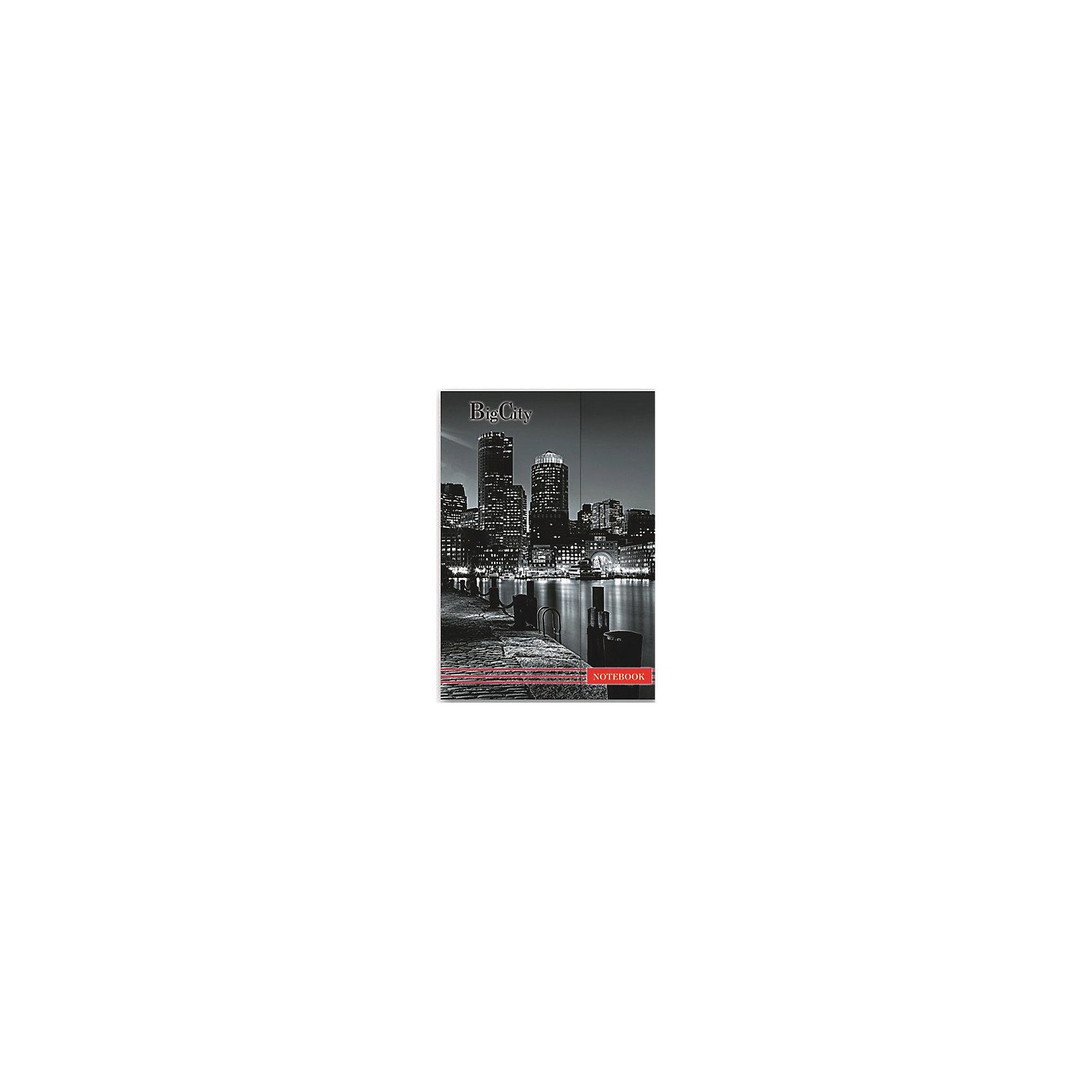 Феникс+ Записная книжка Мегаполис
