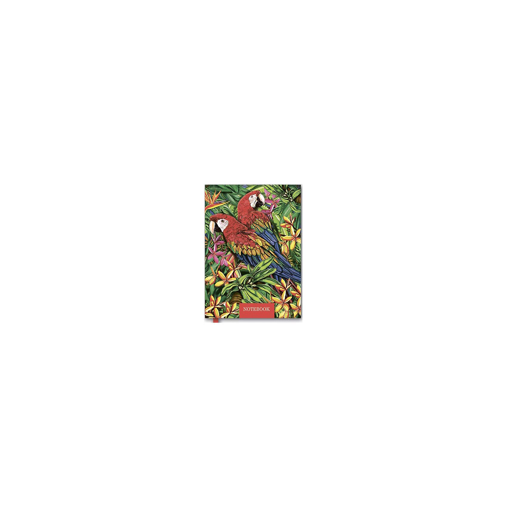 Записная книжка ПопугаиЗаписная книжка - незаменимый помощник для каждого! В нее можно заносить телефоны, фиксировать даты и важные события или просто записывать свои мысли и рисовать. Яркая красивая плотная обложка обязательно привлечет внимание и надежно сохранит все записи, телефоны и рисунки.  <br><br>Дополнительная информация:<br><br>- Обложка: твердая, 7БЦ с поролоном, тиснение фольгой.<br>- Количество страниц: 400.<br>- Размер: 10 х 13,5 см.<br>- Справочная информация.<br>- Вырубка блока на 12 месяцев.<br><br>Записную книжку Попугаи можно купить в нашем магазине.<br><br>Ширина мм: 135<br>Глубина мм: 100<br>Высота мм: 25<br>Вес г: 230<br>Возраст от месяцев: 48<br>Возраст до месяцев: 2147483647<br>Пол: Унисекс<br>Возраст: Детский<br>SKU: 4756037