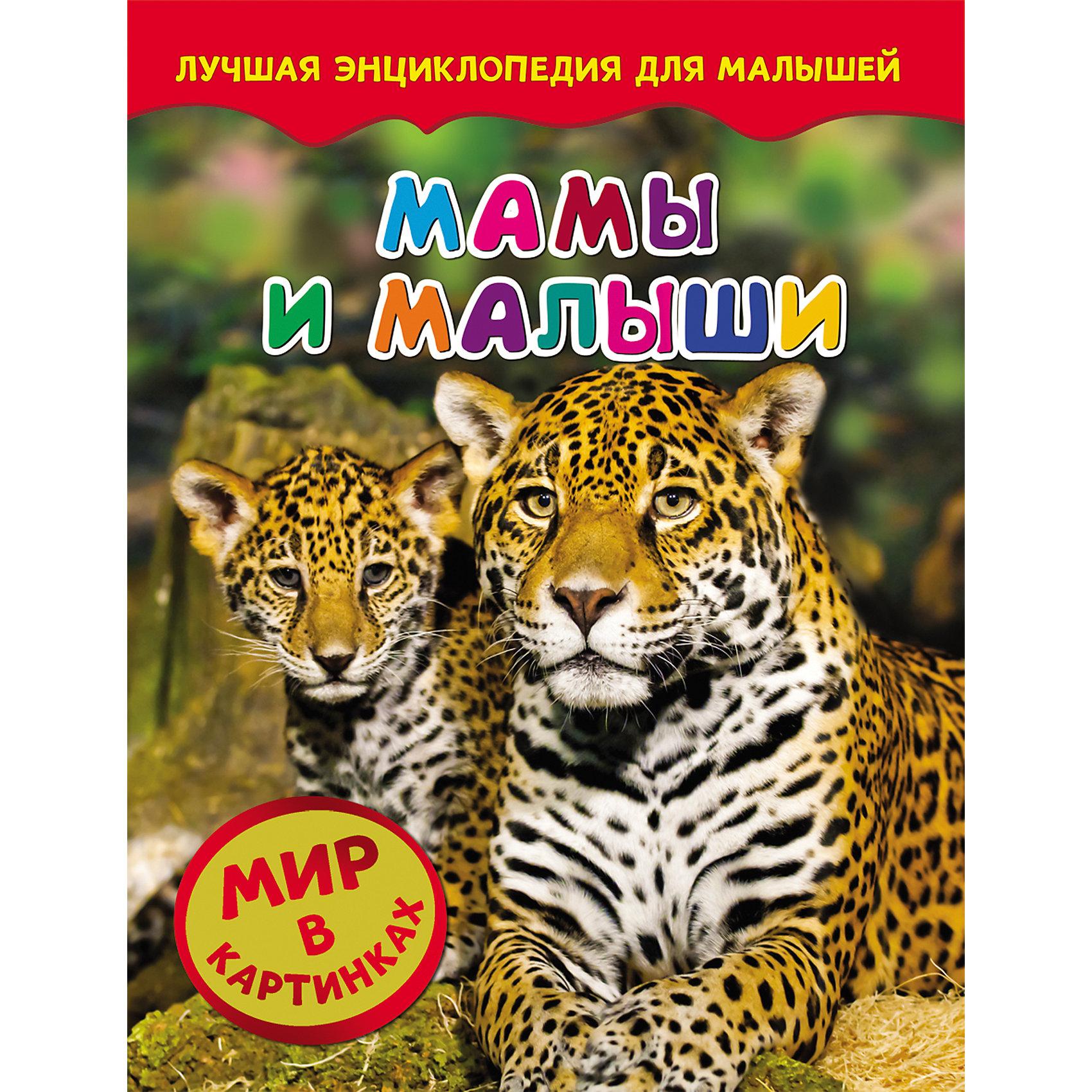 Мамы и малыши, Мир в картинках