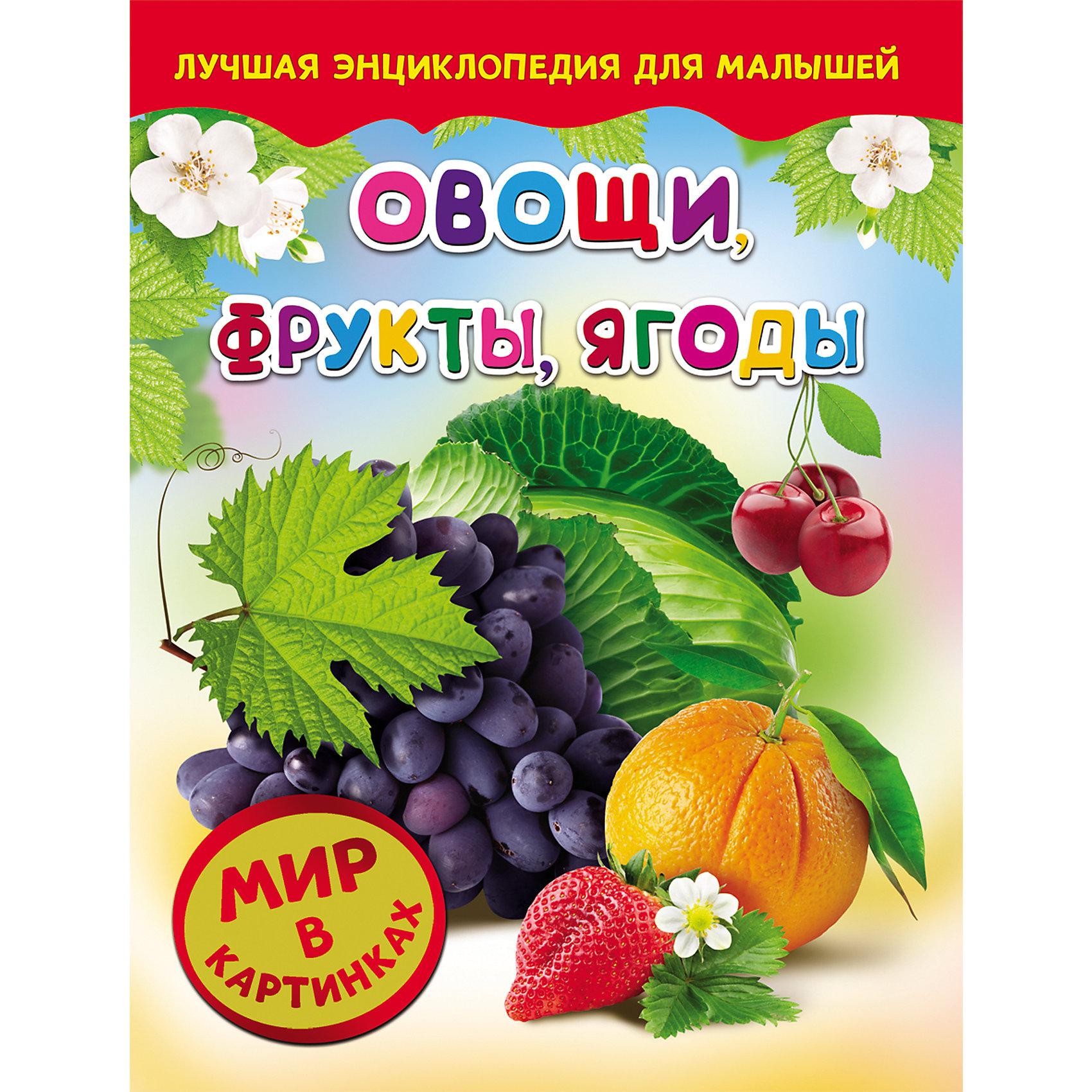 Овощи, фрукты, ягоды, Мир в картинкахС этой удивительной книжкой ваш ребенок откроет огромный мир в картинках! Малыши обожают рассматривать яркие рисунки, с помощью этого они познают мир, развивают цветовосприятие, фантазию и мышление.<br>На страницах этой книги ребенок найдет множество изображений различных овощей, фруктов и ягод. Все рисунки очень яркие и прекрасно детализированы - они обязательно привлекут внимание малышей и дадут крохе самые первые знания об окружающем мире. <br><br>Дополнительная информация:<br><br>- Переплет: твердый.<br>- Количество страниц: 24.<br>- Иллюстрации: цветные. <br>- Формат: 26,5х20,5 см. <br><br>Книгу Овощи, фрукты, ягоды, Мир в картинках, можно купить в нашем магазине.<br><br>Ширина мм: 265<br>Глубина мм: 205<br>Высота мм: 5<br>Вес г: 285<br>Возраст от месяцев: 36<br>Возраст до месяцев: 72<br>Пол: Унисекс<br>Возраст: Детский<br>SKU: 4756079