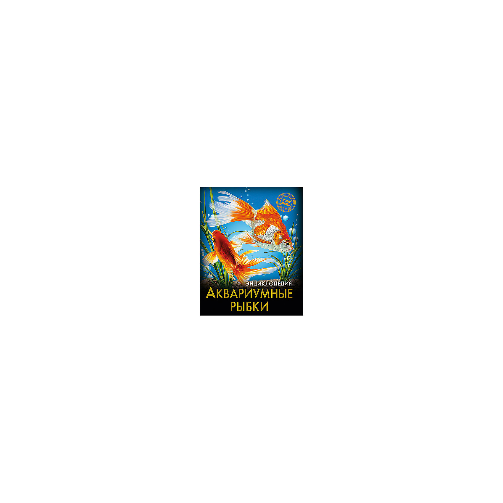Энциклопедия Аквариумные рыбкиЭнциклопедия Аквариумные рыбки порадует всех любителей аквариумных рыбок! В этом издании вы найдете множество интересных и увлекательных тем и фактов, изложенных простым, понятным для детей языком, дополненных яркими иллюстрациями. Энциклопедия в твердой красочной обложке станет прекрасным подарком на любой праздник и обязательно заинтересует ребенка, поможет расширить кругозор и увеличить словарный запас. <br><br>Дополнительная информация:<br><br>- Автор: Александрова Лада<br>- Художник: Ткач-Боровкова Роксолана<br>- Формат: 21,6х17 см.<br>- Переплет: твердый, 7БЦ.<br>- Количество страниц: 96.<br>- Иллюстрации: цветные.<br>- Содержание: Введение. Общая характеристика аквариумных рыбок. Пресноводные аквариумные рыбки. Морские аквариумные рыбки. Экзотические аквариумные рыбки. Заключение. <br><br>Энциклопедию Аквариумные рыбки можно купить в нашем магазине.<br><br>Ширина мм: 170<br>Глубина мм: 5<br>Высота мм: 215<br>Вес г: 310<br>Возраст от месяцев: 72<br>Возраст до месяцев: 2147483647<br>Пол: Унисекс<br>Возраст: Детский<br>SKU: 4756226