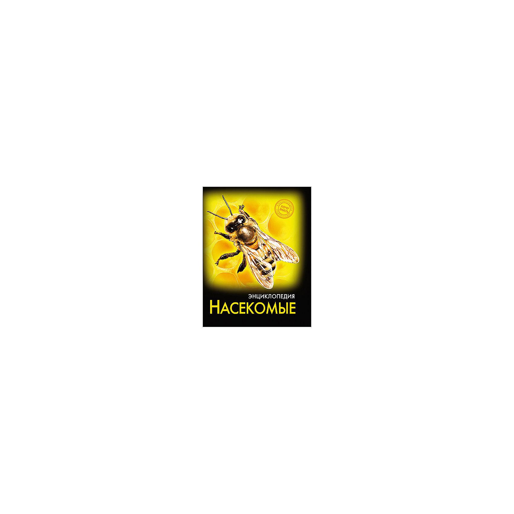 Энциклопедия НасекомыеЭнциклопедии о животных<br>Эта энциклопедия позволит вашему ребенку узнать много нового о насекомых! В этом издании вы найдете множество интересных и увлекательных тем и фактов, изложенных простым, понятным для детей языком, дополненных яркими иллюстрациями. Энциклопедия в твердой красочной обложке станет прекрасным подарком на любой праздник и обязательно заинтересует ребенка, поможет расширить кругозор и увеличить словарный запас. <br><br>Дополнительная информация:<br><br>- Художник: Сальникова Людмила.<br>- Формат: 21,6х17 см.<br>- Переплет: твердый, 7БЦ.<br>- Количество страниц: 96.<br>- Иллюстрации: цветные.<br><br>Энциклопедию Насекомые можно купить в нашем магазине.<br><br>Ширина мм: 170<br>Глубина мм: 5<br>Высота мм: 215<br>Вес г: 310<br>Возраст от месяцев: 72<br>Возраст до месяцев: 2147483647<br>Пол: Унисекс<br>Возраст: Детский<br>SKU: 4756246