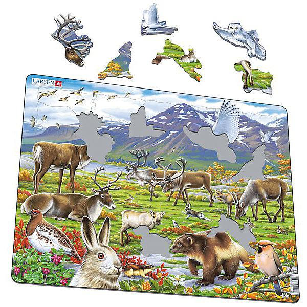 Пазл Арктика, 50 деталей, LarsenПазлы для малышей<br>Пазлы Ларсен - высококачественные обучающие пазлы. Яркая серия Флора и Фауна представляет жителей Арктики. Когда ребенок соберет пазл целиком, он увидит необычные растения и животных, которых редко встретишь в обычной жизни.<br><br>Пазлы - увлечение для всей семьи, можно собирать один пазл несколько раз или каждый раз радовать себя и родных новой увлекательной мозаикой.<br><br>Пазлы Ларсен выполнены из плотного картона, он не деформируется, приятен на ощупь. Специальная подложка позволяет крепко соединять детали.<br>Ширина мм: 365; Глубина мм: 5; Высота мм: 285; Вес г: 320; Возраст от месяцев: 36; Возраст до месяцев: 1188; Пол: Унисекс; Возраст: Детский; SKU: 4761475;