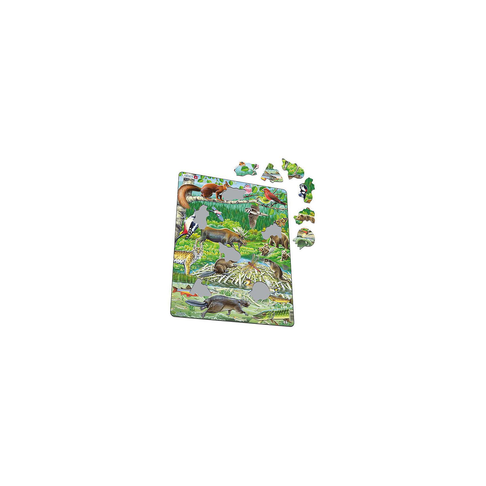 Пазл Северный лес, 45 деталей, LarsenПазлы для малышей<br>Яркая серия Флора и Фауна норвежской фирмы Ларсен представляет пазл, на котором представлены лесные жители. С фотографической точностью прорисованы обитатели и растительный мир самых отдаленных уголков планеты. Благодаря яркому развивающему набору у детей формируется образное и логическое мышление, развивается внимание, память. Детали пазла выполнены из трехслойного картона, не деформируются и удобны для маленьких детских ручек. В наборе: 45 элементов пазла<br><br>Ширина мм: 365<br>Глубина мм: 5<br>Высота мм: 285<br>Вес г: 320<br>Возраст от месяцев: 36<br>Возраст до месяцев: 1188<br>Пол: Унисекс<br>Возраст: Детский<br>SKU: 4761476
