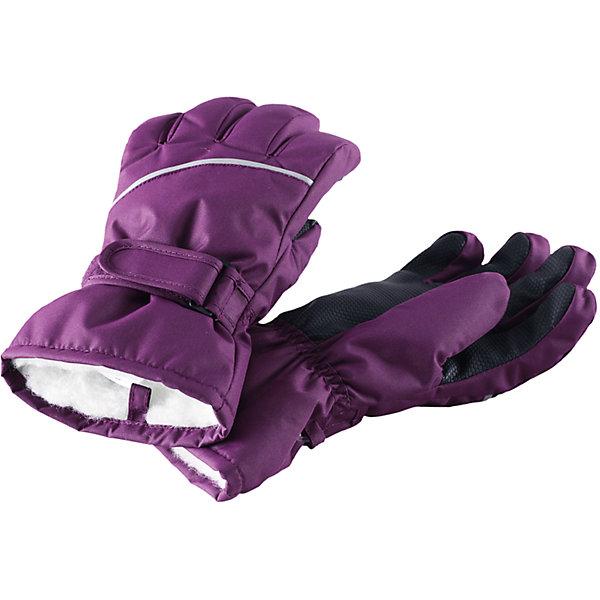 Перчатки Harald для девочки ReimaПерчатки, варежки<br>Перчатки  Reima<br>Зимние перчатки для детей. Водонепроницаемый материал, вставки отсутствуют — товар не является водонепроницаемым. Водо- и ветронепроницаемый и грязеотталкивающий материал. Накладки на ладонях, кончиках пальцев и больших пальцах. Теплая ворсистая подкладка из ткани из смеси шерсти. Средняя степень утепления. Простая застежка на липучке. Логотип Reima® сбоку. Светоотражающие полосы.<br>Утеплитель: Reima® Comfortinsulation,80 g<br>Уход:<br>Стирать по отдельности. Стирать моющим средством, не содержащим отбеливающие вещества. Полоскать без специального средства. Сушить при низкой температуре. <br>Состав:<br>100% Полиамид, полиуретановое покрытие<br><br>Ширина мм: 162<br>Глубина мм: 171<br>Высота мм: 55<br>Вес г: 119<br>Цвет: лиловый<br>Возраст от месяцев: 72<br>Возраст до месяцев: 96<br>Пол: Женский<br>Возраст: Детский<br>Размер: 5,8,4,3,7,6<br>SKU: 4779785