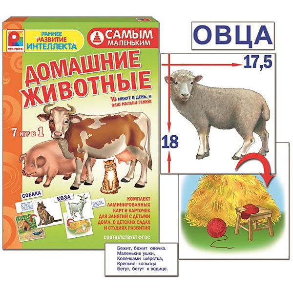 Самым маленьким. Домашние животные, РадугаОкружающий мир<br>Малыш с интересом познакомится с дикими животными (медведь, волк, заяц, белка, ёж, лиса, мышь, тигр). Игра способствует развитию мышления, речи, памяти и внимания.<br><br>Ширина мм: 280<br>Глубина мм: 190<br>Высота мм: 35<br>Вес г: 250<br>Возраст от месяцев: 36<br>Возраст до месяцев: 96<br>Пол: Унисекс<br>Возраст: Детский<br>SKU: 4780343