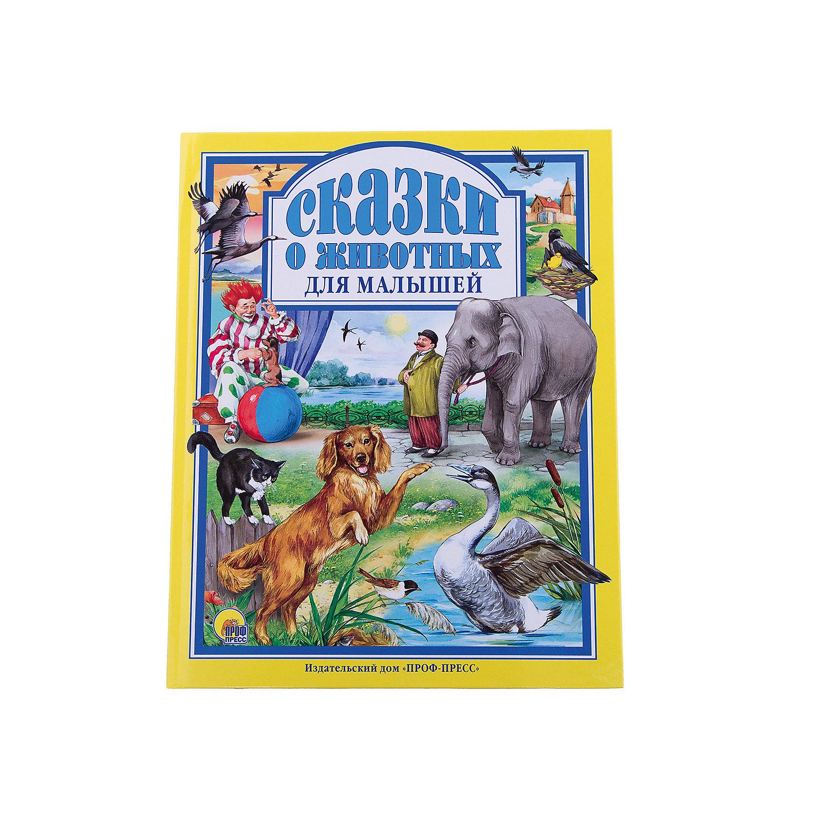 Сказки о животных для малышейСказки<br>Данная серия собрала сказки, проверенные многими поколениями, которые понравятся и современным детям. Книги - это лучший подарок не только взрослым, они помогают детям познавать мир и учиться читать, также книги позволяют ребенку весело проводить время. Они также стимулируют развитие воображения, логики и творческого мышления.<br>Это издание очень красиво оформлено, в него вошли самые интересные сказки. Яркие картинки обязательно понравятся малышам! Книга сделана из качественных и безопасных для детей материалов. Содержание: произведения известных русских писателей: Дмитрия Мамина-Сибиряка, Константина Ушинского, Льва Толстого, Александра Куприна( в сокращении), Антона Чехова и Саши Чёрного.<br>  <br>Дополнительная информация:<br><br>размер: 200х265 мм;<br>вес: 441 г.<br><br>Книгу Сказки о животных для малышей от издательства Проф-Пресс можно купить в нашем магазине.<br><br>Ширина мм: 200<br>Глубина мм: 13<br>Высота мм: 265<br>Вес г: 441<br>Возраст от месяцев: 0<br>Возраст до месяцев: 60<br>Пол: Унисекс<br>Возраст: Детский<br>SKU: 4787334