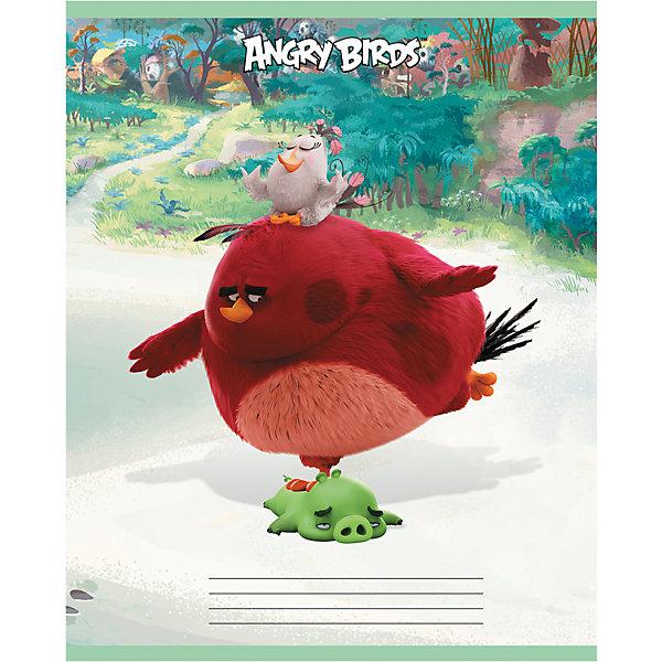 Дневник Хатбер, Angry BirdsБумажная продукция<br>Яркий универсальный дневник для учащихся младших и старших классов. Твердая обложка надежно защищает бумагу и долго сохраняет привлекательный внешний вид.<br><br>Дополнительная информация:<br><br>- Твердый переплет.<br>- Обложка с ламинацией.<br>- Внутренний блок - офсет.<br>- Размер упаковки: 21,5х17х0,9 см.<br>-  Вес в упаковке: 235 г.<br><br>Дневник Хатбер Angry Birds можно купить в нашем магазине.<br><br>Ширина мм: 215<br>Глубина мм: 170<br>Высота мм: 9<br>Вес г: 235<br>Возраст от месяцев: 72<br>Возраст до месяцев: 204<br>Пол: Унисекс<br>Возраст: Детский<br>SKU: 4792790