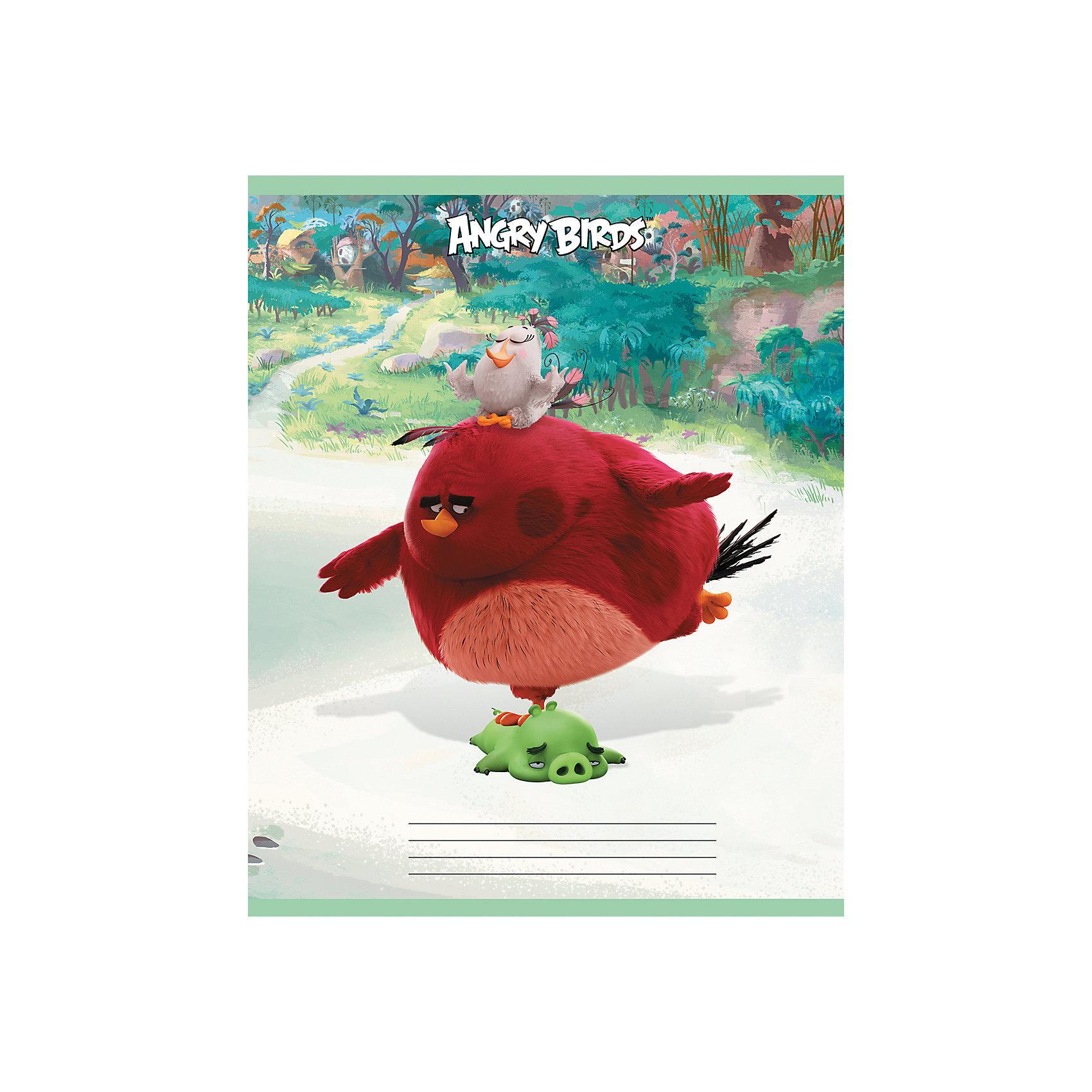Дневник Хатбер, Angry BirdsЯркий универсальный дневник для учащихся младших и старших классов. Твердая обложка надежно защищает бумагу и долго сохраняет привлекательный внешний вид.<br><br>Дополнительная информация:<br><br>- Твердый переплет.<br>- Обложка с ламинацией.<br>- Внутренний блок - офсет.<br>- Размер упаковки: 21,5х17х0,9 см.<br>-  Вес в упаковке: 235 г.<br><br>Дневник Хатбер Angry Birds можно купить в нашем магазине.<br><br>Ширина мм: 215<br>Глубина мм: 170<br>Высота мм: 9<br>Вес г: 235<br>Возраст от месяцев: 72<br>Возраст до месяцев: 204<br>Пол: Унисекс<br>Возраст: Детский<br>SKU: 4792790