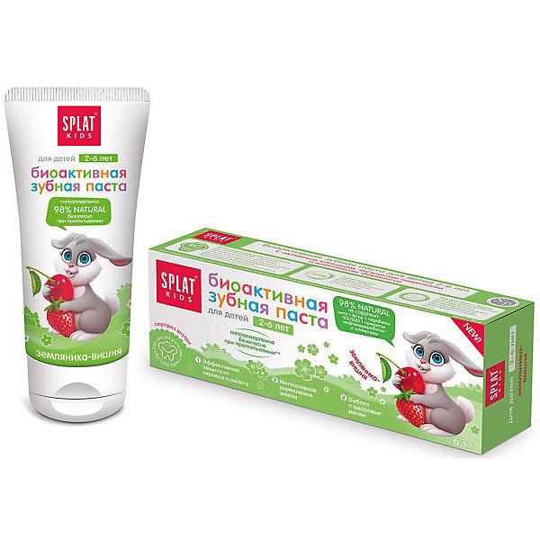 Натуральная зубная паста для детей от 2 до 6 лет, Splat Kids , земляника-вишняДетская зубная паста<br>Эффективная, натуральная и безопасная при проглатывании детская зубная паста для нежной защиты от кариеса и интенсивного укрепления эмали, заботы о здоровье десен. Помогает в игровой форме научить ребенка чистить зубы просто и весело.Инновационная, защищенная патентом система LUCTATOL®, на основе экстракта лакричника и молочных ферментов уничтожает кариесогенные бактерии и блокирует их дальнейшее развитие.<br>Ширина мм: 140; Глубина мм: 53; Высота мм: 40; Вес г: 83; Возраст от месяцев: 24; Возраст до месяцев: 72; Пол: Унисекс; Возраст: Детский; SKU: 4796727;
