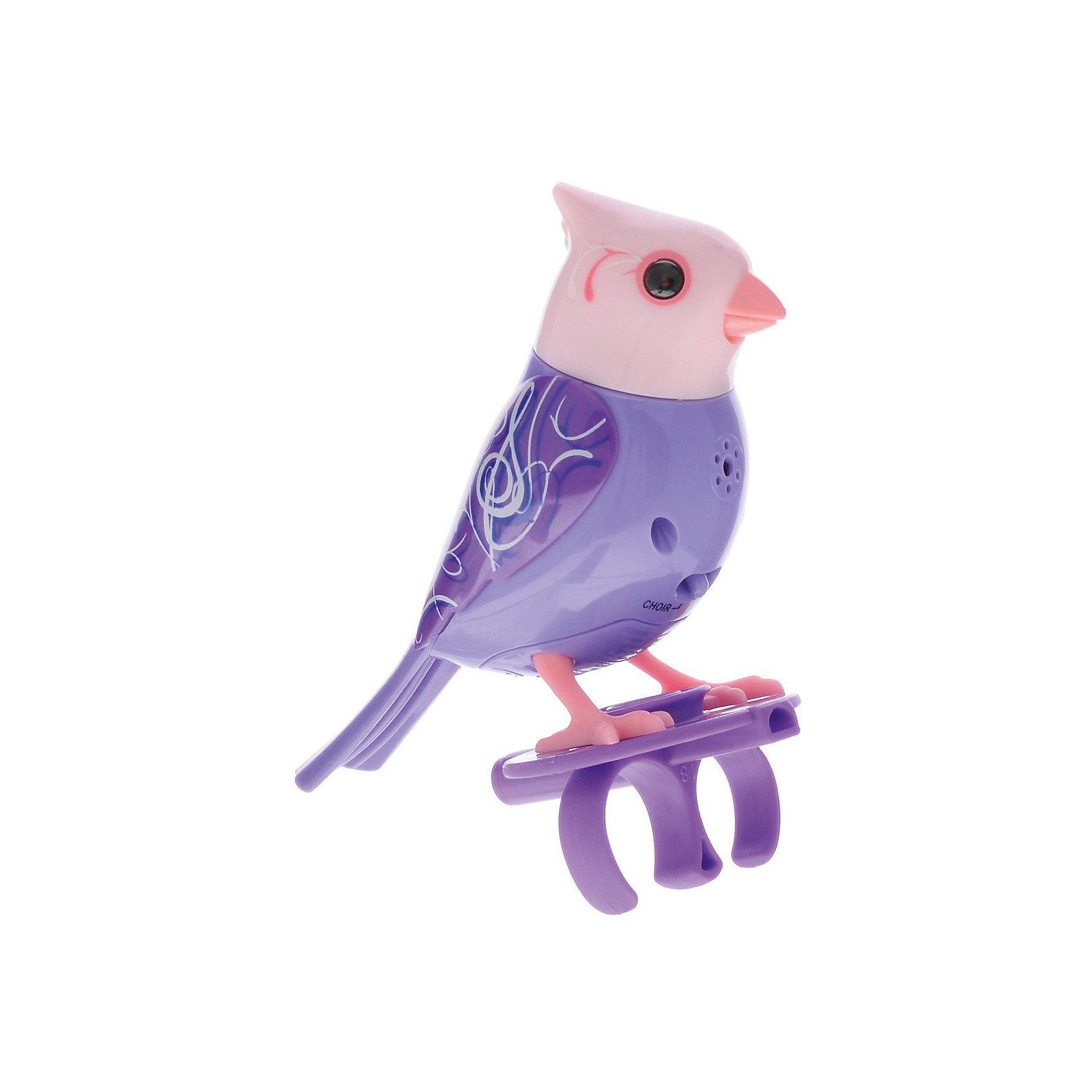 Поющая птичка с кольцом, сиреневая, DigiBirdsИнтерактивные животные<br>Поющая птичка с кольцом, сиреневая, DigiBirds, Silverlit (Сильверлит) ? музыкальная игрушка от мирового производителя детских товаров Silverlit (Сильверлит). Птичка оснащена световыми и звуковыми эффектами. Ее творческий репертуар состоит из 20 песенок, которые исполняются как в сольном виде, так и в хоровом. Птичка выполнена из высокопрочного пластика ярких расцветок. Активируется птичка тремя способами: на нее достаточно подуть или посвистеть в свисток, который идет в комплекте, или резко взмахнуть по воздуху, держа птичку в руке. <br>Поющая птичка с кольцом, сиреневая, DigiBirds, Silverlit (Сильверлит)  ? совершенно уникальная игрушка, которая не только развлекает вашего ребенка, но и занимается его музыкальным развитием. В первую очередь, она способствует формированию музыкального слуха и памяти. Простые действия: подуть в свисток, подуть на птичку ? простые, но очень эффективные упражнения, которые направлены на развитие речевого аппарата.<br>Поющая птичка с кольцом, сиреневая, DigiBirds, Silverlit (Сильверлит) ? это миниатюрный музыкальный центр для вашего ребенка.<br><br>Дополнительная информация:<br><br>- Вид игр: сюжетно-ролевые игры <br>- Предназначение: для дома<br>- Дополнительные функции: синхронизация со всеми персонажами DigiFriends<br>- Батарейки: 3 шт. LR44<br>- Материал: высококачественный пластик<br>- Размер (ДхШхВ): 6,4*15,2*10,2 см<br>- Вес: 91 г<br>- Комплектация: птичка, свисток-кольцо, инструкция, батарейки<br>- Особенности ухода: протирать влажной губкой<br><br>ВНИМАНИЕ! Данный артикул имеется в наличии в разных цветовых исполнениях (сиреневый, синий, красный, розовый). К сожалению, заранее выбрать определенный цвет невозможно. <br><br>Подробнее:<br><br>• Для детей в возрасте: от 3 лет и до 7 лет <br>• Страна производитель: Китай<br>• Торговый бренд: Silverlit<br><br>Поющую птичку с кольцом, сиреневую, DigiBirds, Silverlit (Сильверлит) можно купить в нашем интернет-магази