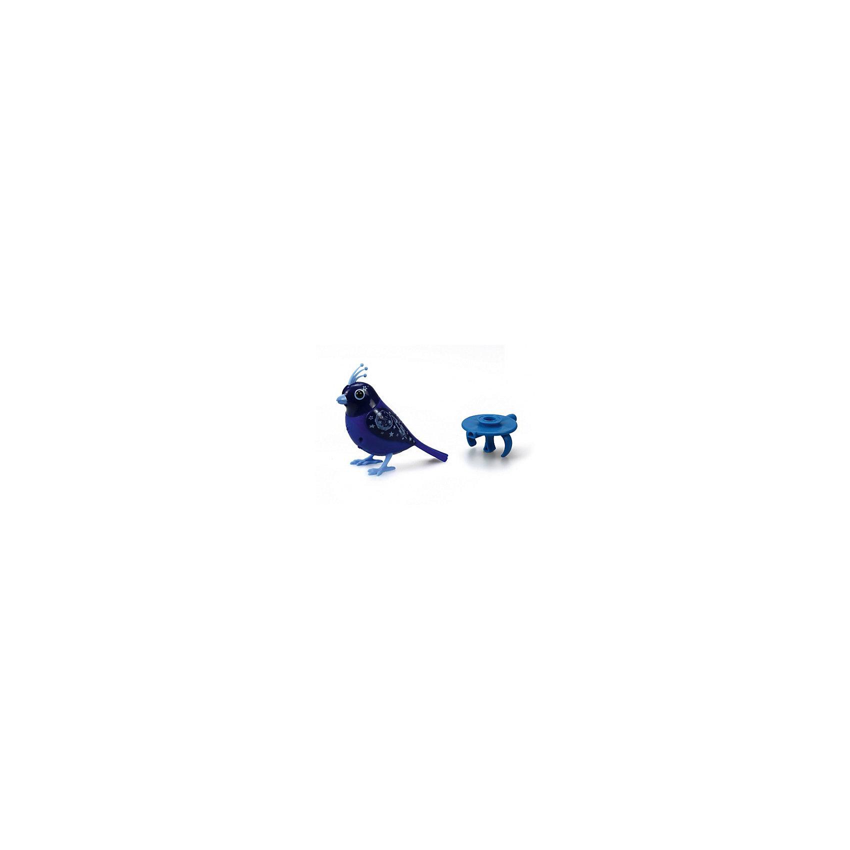 Поющая птичка с кольцом, синяя, DigiBirdsИнтерактивные животные<br>Поющая птичка с кольцом, синяя, DigiBirds, Silverlit (Сильверлит) ? музыкальная игрушка от мирового производителя детских товаров Silverlit (Сильверлит). Птичка оснащена световыми и звуковыми эффектами. Ее творческий репертуар состоит из 20 песенок, которые исполняются как в сольном виде, так и в хоровом. Птичка выполнена из высокопрочного пластика ярких расцветок. Активируется птичка тремя способами: на нее достаточно подуть или посвистеть в свисток, который идет в комплекте, или резко взмахнуть по воздуху, держа птичку в руке. <br>Поющая птичка с кольцом, синяя, DigiBirds, Silverlit (Сильверлит)  ? совершенно уникальная игрушка, которая не только развлекает вашего ребенка, но и занимается его музыкальным развитием. В первую очередь, она способствует формированию музыкального слуха и памяти. Простые действия: подуть в свисток, подуть на птичку ? простые, но очень эффективные упражнения, которые направлены на развитие речевого аппарата.<br>Поющая птичка с кольцом, синяя, DigiBirds, Silverlit (Сильверлит) ? это миниатюрный музыкальный центр для вашего ребенка.<br><br>Дополнительная информация:<br><br>- Вид игр: сюжетно-ролевые игры <br>- Предназначение: для дома<br>- Дополнительные функции: синхронизация со всеми персонажами DigiFriends<br>- Батарейки: 3 шт. LR44<br>- Материал: высококачественный пластик<br>- Размер (ДхШхВ): 6,4*15,2*10,2 см<br>- Вес: 91 г<br>- Комплектация: птичка, свисток-кольцо, инструкция, батарейки<br>- Особенности ухода: протирать влажной губкой<br><br>ВНИМАНИЕ! Данный артикул имеется в наличии в разных цветовых исполнениях (сиреневый, синий, красный, розовый). К сожалению, заранее выбрать определенный цвет невозможно. <br><br>Подробнее:<br><br>• Для детей в возрасте: от 3 лет и до 7 лет <br>• Страна производитель: Китай<br>• Торговый бренд: Silverlit<br><br>Поющую птичку с кольцом, синюю, DigiBirds, Silverlit (Сильверлит) можно купить в нашем интернет-магазине.<br><br>Ширина мм