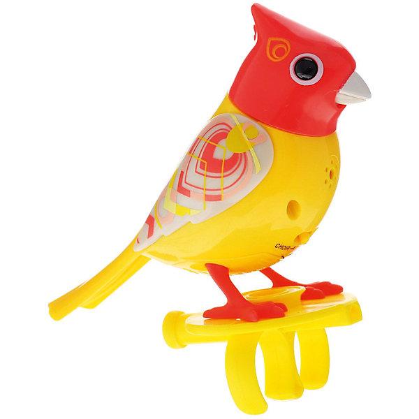 Поющая птичка с кольцом DigiBirds, желтыйИнтерактивные животные<br>Поющая птичка с кольцом DigiBirds, желтый, Silverlit (Сильверлит) ? музыкальная игрушка от мирового производителя детских товаров Silverlit (Сильверлит). Птичка оснащена световыми и звуковыми эффектами. Ее творческий репертуар состоит из 20 песенок, которые исполняются как в сольном виде, так и в хоровом. Птичка выполнена из высокопрочного пластика ярких расцветок. Активируется птичка тремя способами: на нее достаточно подуть или посвистеть в свисток, который идет в комплекте, или резко взмахнуть по воздуху, держа птичку в руке.<br>Поющая птичка с кольцомDigiBirds, желтый, Silverlit (Сильверлит) ? совершенно уникальная игрушка, которая не только развлекает вашего ребенка, но и занимается его музыкальным развитием. В первую очередь, она способствует формированию музыкального слуха и памяти. Простые действия: подуть в свисток, подуть на птичку ? простые, но очень эффективные упражнения, которые направлены на развитие речевого аппарата.<br>Поющая птичка с кольцомDigiBirds, желтый, Silverlit (Сильверлит) ? это миниатюрный музыкальный центр для вашего ребенка.<br><br>Дополнительная информация:<br><br>- Вид игр: сюжетно-ролевые игры<br>- Предназначение: для дома<br>- Дополнительные функции: синхронизация со всеми персонажами DigiFriends<br>- Батарейки: 3 шт. LR44<br>- Материал: высококачественный пластик<br>- Размер (ДхШхВ): 6,4*15,2*10,2 см<br>- Вес: 91 г<br>- Комплектация: птичка, свисток-кольцо, инструкция, батарейки<br>- Особенности ухода: протирать влажной губкой<br><br>ВНИМАНИЕ! Данный артикул имеется в наличии в разных цветовых исполнениях (сиреневый, синий, красный, розовый). К сожалению, заранее выбрать определенный цвет невозможно.<br><br>Подробнее:<br><br>• Для детей в возрасте: от 3 лет и до 7 лет<br>• Страна производитель: Китай<br>• Торговый бренд: Silverlit<br><br>Поющую птичку с кольцомDigiBirds, желтый, Silverlit (Сильверлит) можно купить в нашем интернет-магазине.<br>Ширина мм: 64; Глубин