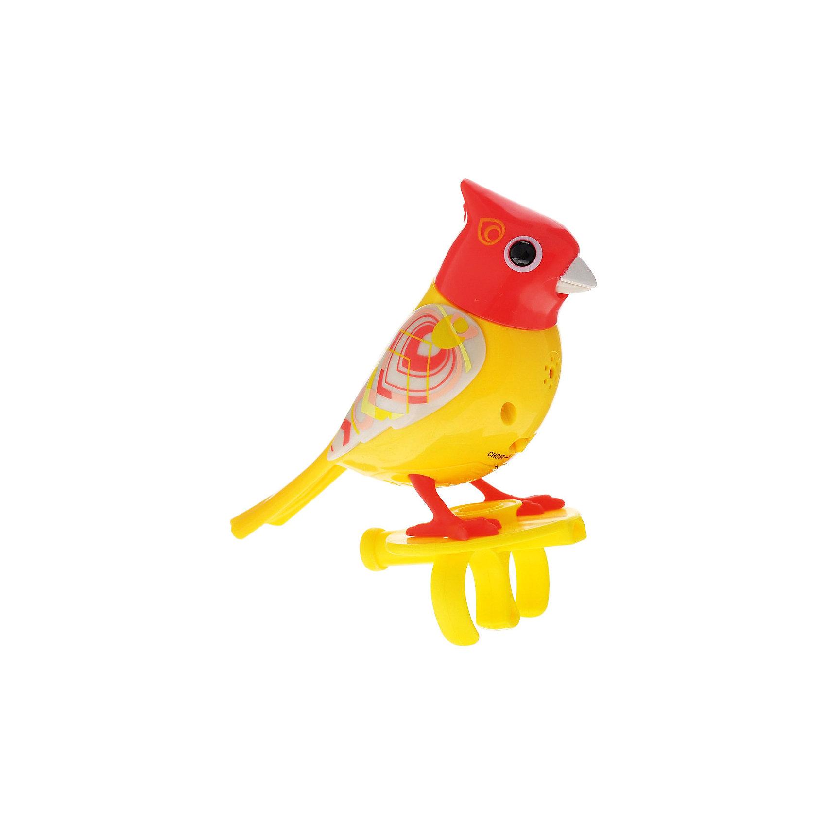 Поющая птичка с кольцом, красная, DigiBirdsИнтерактивные животные<br>Поющая птичка с кольцом, красная, DigiBirds, Silverlit (Сильверлит) ? музыкальная игрушка от мирового производителя детских товаров Silverlit (Сильверлит). Птичка оснащена световыми и звуковыми эффектами. Ее творческий репертуар состоит из 20 песенок, которые исполняются как в сольном виде, так и в хоровом. Птичка выполнена из высокопрочного пластика ярких расцветок. Активируется птичка тремя способами: на нее достаточно подуть или посвистеть в свисток, который идет в комплекте, или резко взмахнуть по воздуху, держа птичку в руке. <br>Поющая птичка с кольцом, красная, DigiBirds, Silverlit (Сильверлит)  ? совершенно уникальная игрушка, которая не только развлекает вашего ребенка, но и занимается его музыкальным развитием. В первую очередь, она способствует формированию музыкального слуха и памяти. Простые действия: подуть в свисток, подуть на птичку ? простые, но очень эффективные упражнения, которые направлены на развитие речевого аппарата.<br>Поющая птичка с кольцом, красная, DigiBirds, Silverlit (Сильверлит) ? это миниатюрный музыкальный центр для вашего ребенка.<br><br>Дополнительная информация:<br><br>- Вид игр: сюжетно-ролевые игры <br>- Предназначение: для дома<br>- Дополнительные функции: синхронизация со всеми персонажами DigiFriends<br>- Батарейки: 3 шт. LR44<br>- Материал: высококачественный пластик<br>- Размер (ДхШхВ): 6,4*15,2*10,2 см<br>- Вес: 91 г<br>- Комплектация: птичка, свисток-кольцо, инструкция, батарейки<br>- Особенности ухода: протирать влажной губкой<br><br>ВНИМАНИЕ! Данный артикул имеется в наличии в разных цветовых исполнениях (сиреневый, синий, красный, розовый). К сожалению, заранее выбрать определенный цвет невозможно. <br><br>Подробнее:<br><br>• Для детей в возрасте: от 3 лет и до 7 лет <br>• Страна производитель: Китай<br>• Торговый бренд: Silverlit<br><br>Поющую птичку с кольцом, красную, DigiBirds, Silverlit (Сильверлит) можно купить в нашем интернет-магазине.<br><br