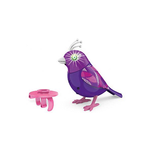 Птичка с мерцающими глазами, сиреневая, DigiBirdsРобокар Поли<br>Птичка с мерцающими глазами, сиреневая, DigiBirds, Silverlit (Сильверлит) ? поющая птичка из серии DigiBirds с дополнительным эффектом ? во время пения у нее светятся глаза. Кроме того, птичка оснащена световыми и звуковыми эффектами. Ее творческий репертуар состоит из 55 песенок, которые исполняются как в сольном виде, так и в хоровом. Птичка выполнена из высокопрочного пластика ярких расцветок. Активируется птичка тремя способами: на нее достаточно подуть или посвистеть в свисток, который идет в комплекте, или резко взмахнуть по воздуху, держа птичку в руке. <br>Птичка с мерцающими глазами, сиреневая, DigiBirds, Silverlit (Сильверлит) ? совершенно уникальная игрушка, которая не только развлекает вашего ребенка, но и занимается его музыкальным развитием. В первую очередь, она способствует формированию музыкального слуха и памяти. Простые действия: подуть в свисток, подуть на сову ? простые, но очень эффективные упражнения, которые направлены на развитие речевого аппарата.<br>Птичка с мерцающими глазами, сиреневая, DigiBirds, Silverlit (Сильверлит) ? это миниатюрный музыкальный центр для вашего ребенка.<br><br>Дополнительная информация:<br><br>- Вид игр: сюжетно-ролевые игры <br>- Предназначение: для дома<br>- Дополнительные функции: синхронизация со всеми персонажами DigiFriends<br>- Батарейки: 3 шт. LR44<br>- Материал: высококачественный пластик<br>- Размер (ДхШхВ): 6,4*15,2*10,2 см<br>- Вес: 91 г<br>- Комплектация: птичка, свисток-кольцо, инструкция, батарейки<br>- Особенности ухода: протирать влажной губкой<br><br>Подробнее:<br><br>• Для детей в возрасте: от 3 лет и до 7 лет <br>• Страна производитель: Китай<br>• Торговый бренд: Silverlit<br><br>Птичку с мерцающими глазами, сиреневую, DigiBirds, Silverlit (Сильверлит) можно купить в нашем интернет-магазине.<br><br>Ширина мм: 64<br>Глубина мм: 152<br>Высота мм: 102<br>Вес г: 91<br>Возраст от месяцев: 36<br>Возраст до месяцев: 84<br>Пол: Унисекс<br>В