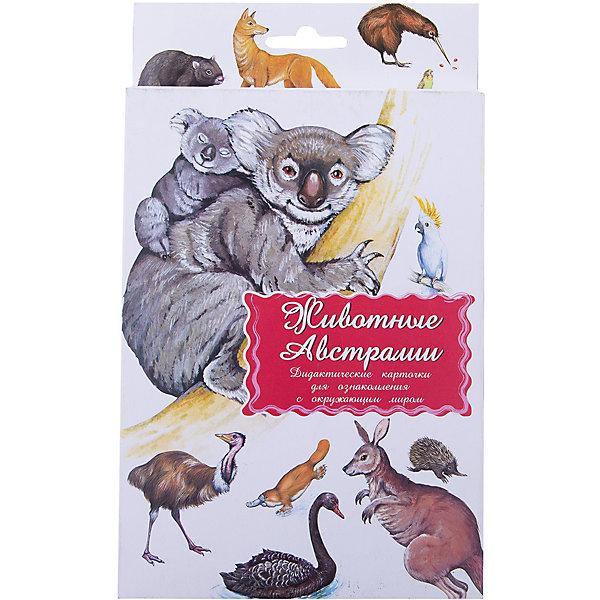 Дидактические карточки Животные АвстралииОбучающие карточки<br>Тематические комплекты дидактических карточек помогут познакомить ребенка с окружающим миром, развить речевые умения, научить сравнивать, классифицировать, обобщать. Карточки рекомендуются родителям для познавательных игр с детьми и занятий  по методике Г.Домана.  Могут использоваться в индивидуальной и групповой работе логопедами, психологами, воспитателями детских садов, учителями начальных классов.  В каждом комплекте 16 карточек, каждая из которых содержит интересную познавательную информацию об изображенном на ней предмете.<br><br>Ширина мм: 150<br>Глубина мм: 90<br>Высота мм: 90<br>Вес г: 200<br>Возраст от месяцев: 36<br>Возраст до месяцев: 2147483647<br>Пол: Унисекс<br>Возраст: Детский<br>SKU: 4802967